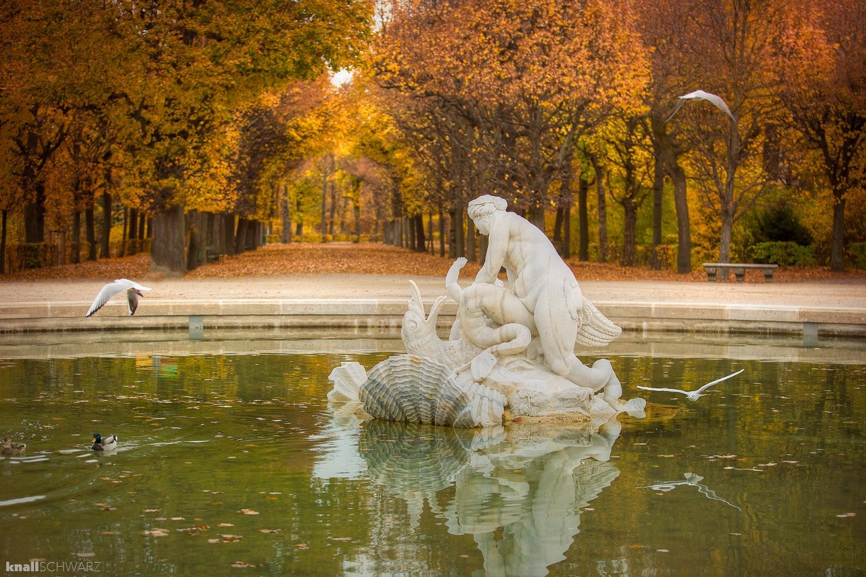 Schlosspark Schönbrunn by Charlie Schwarz