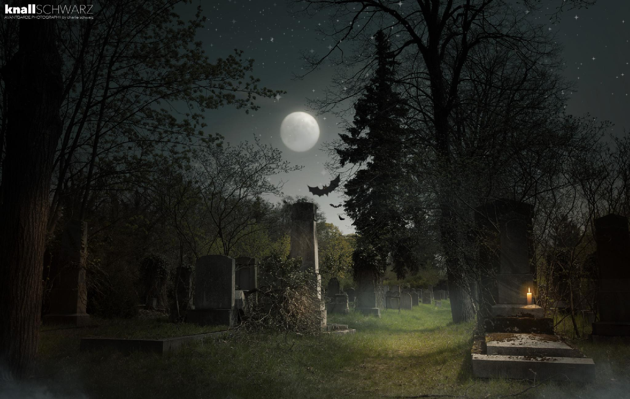 Photo in Fine Art #halloween #friedhof
