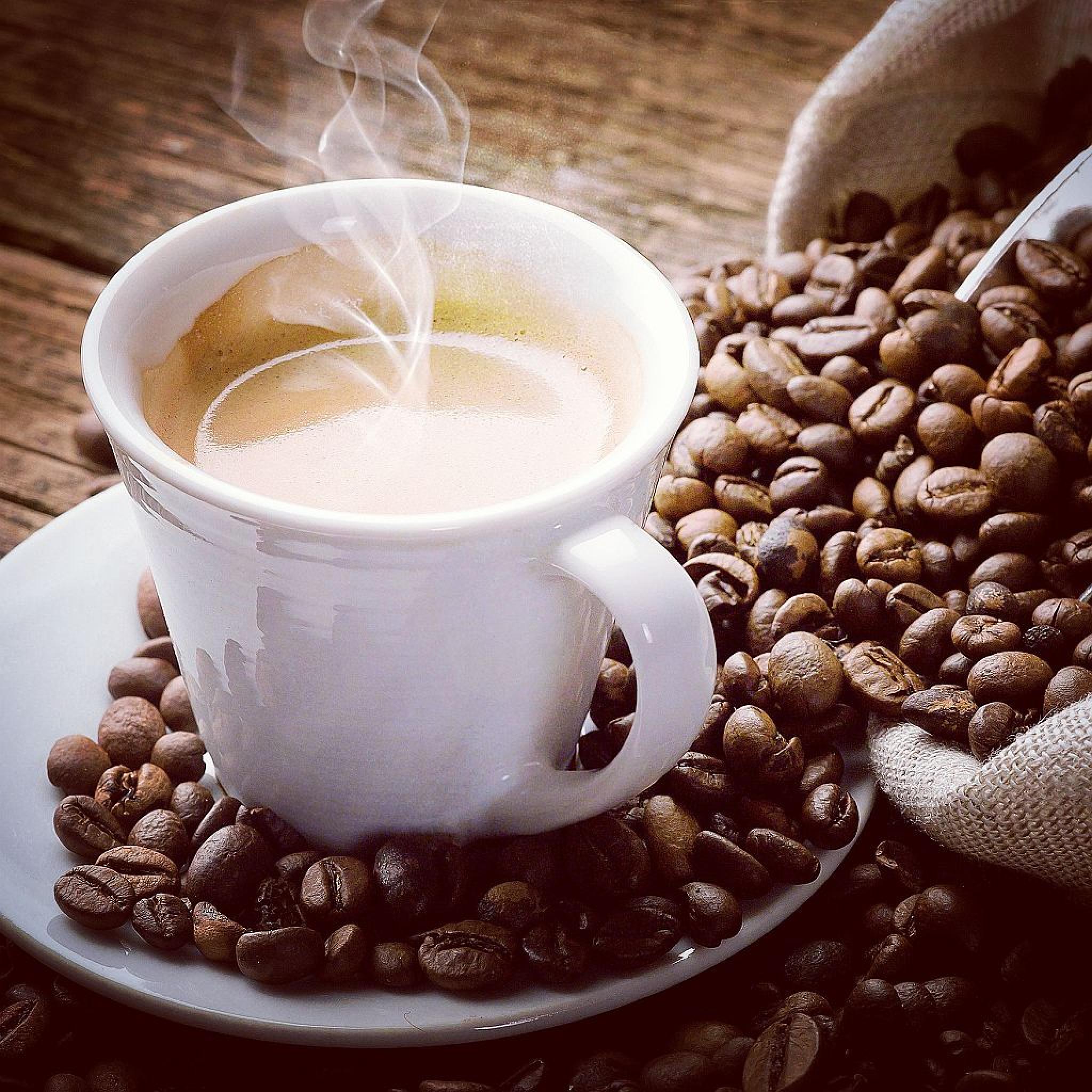 café, a bebida dos deuses... by extremmer