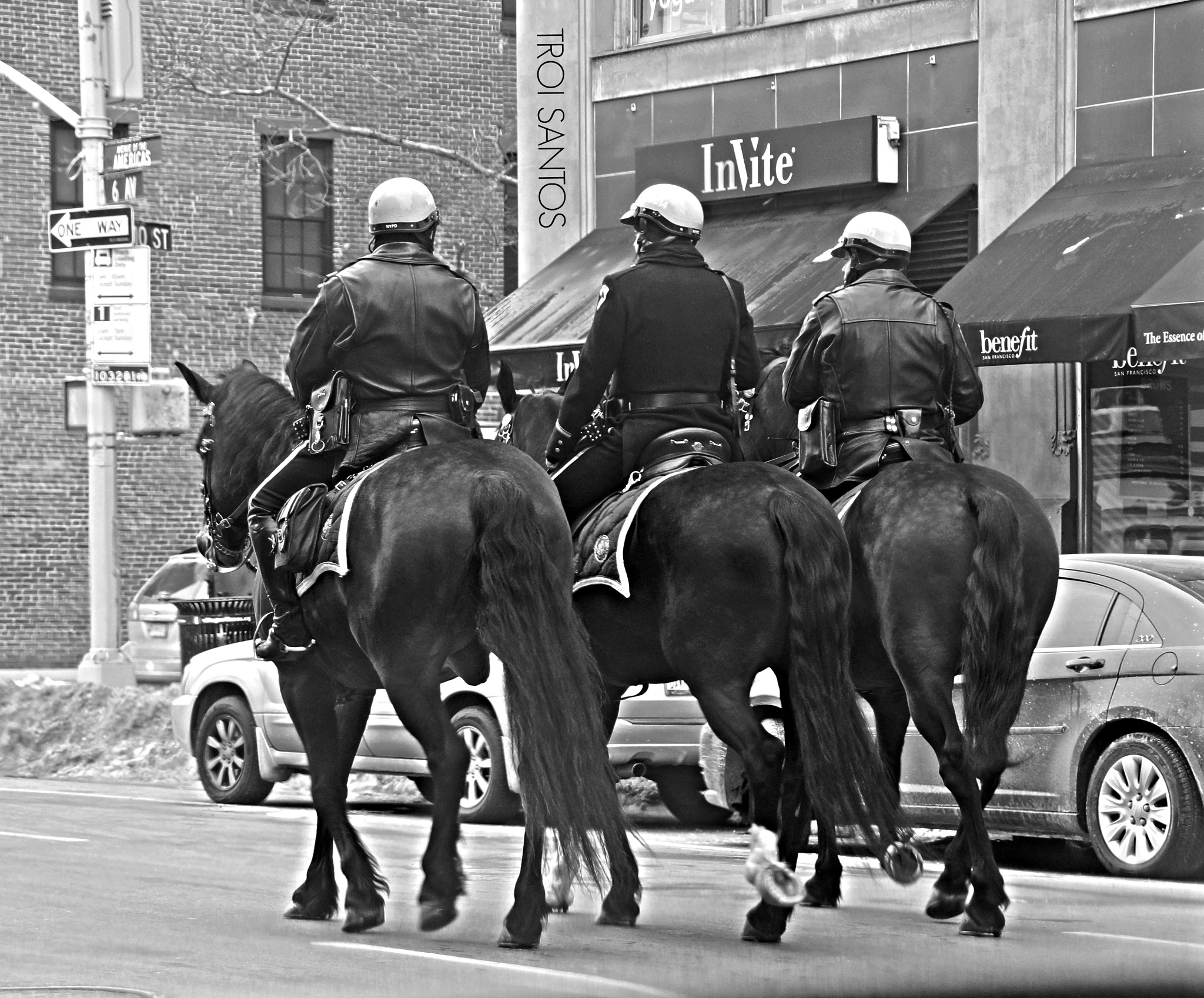 NYPD MOUNTED UNIT by Troi Santos