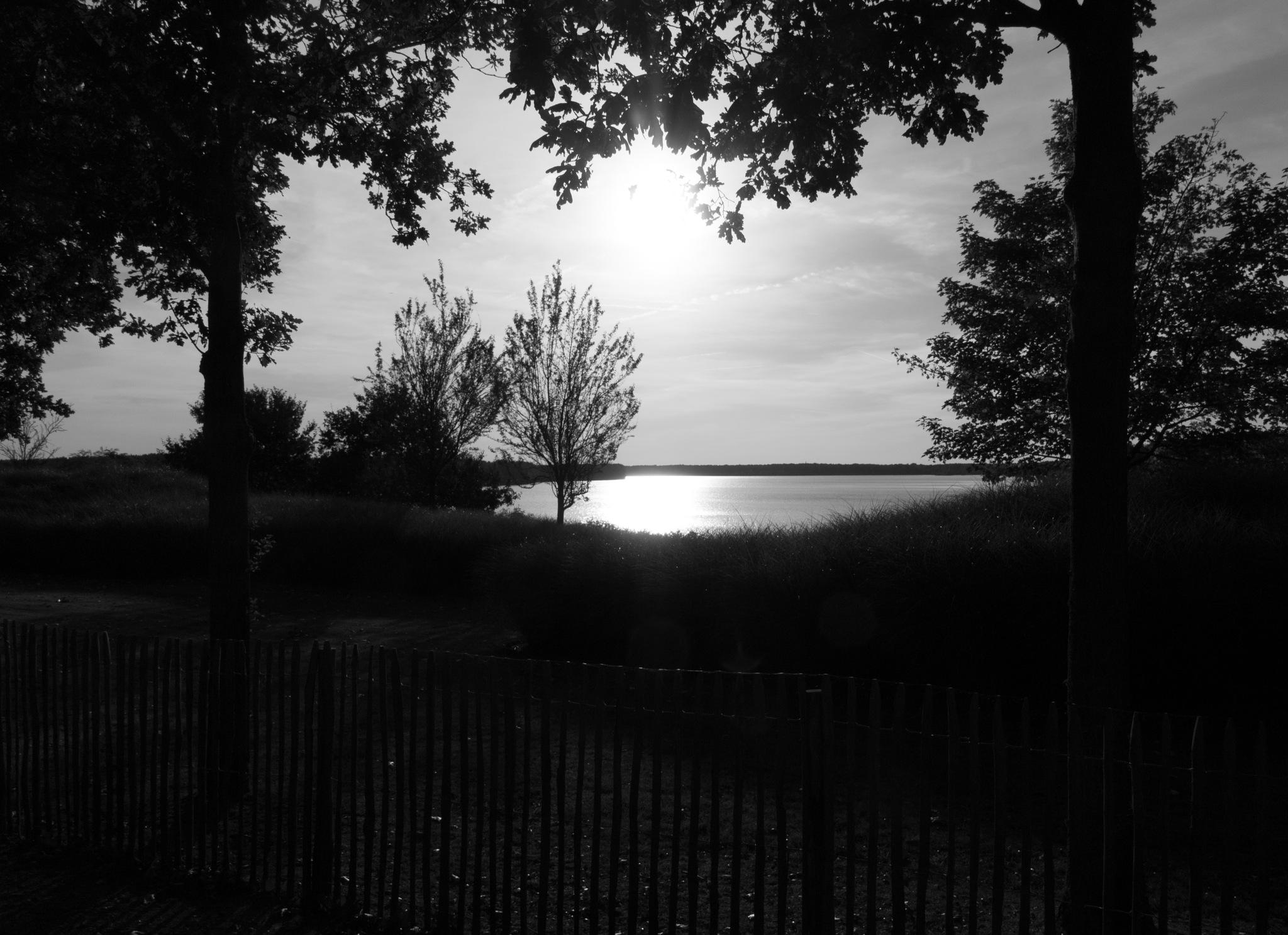 Ondergaande zon in de herfst. by KrisSchellekens