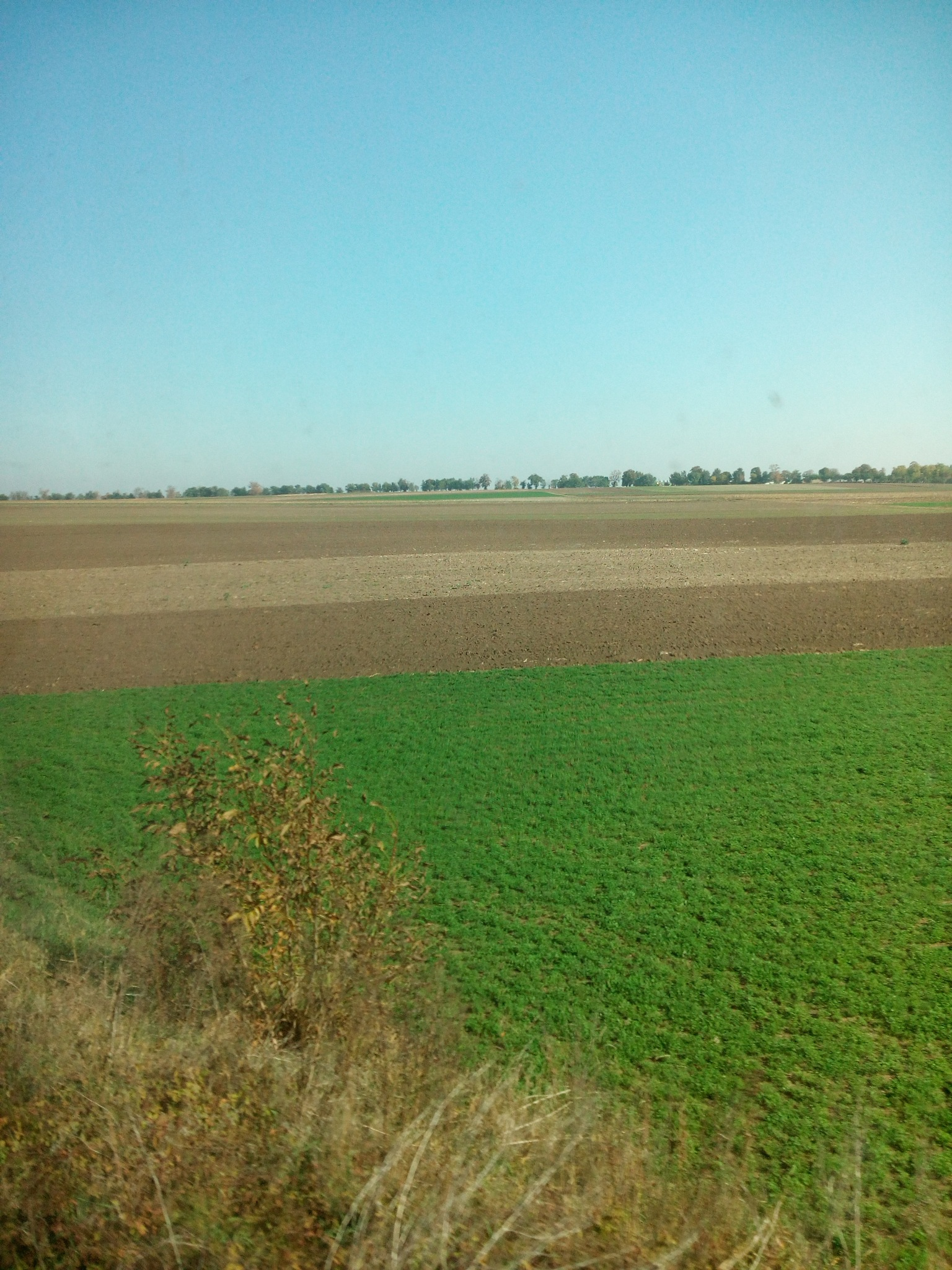 View from the train by Minja