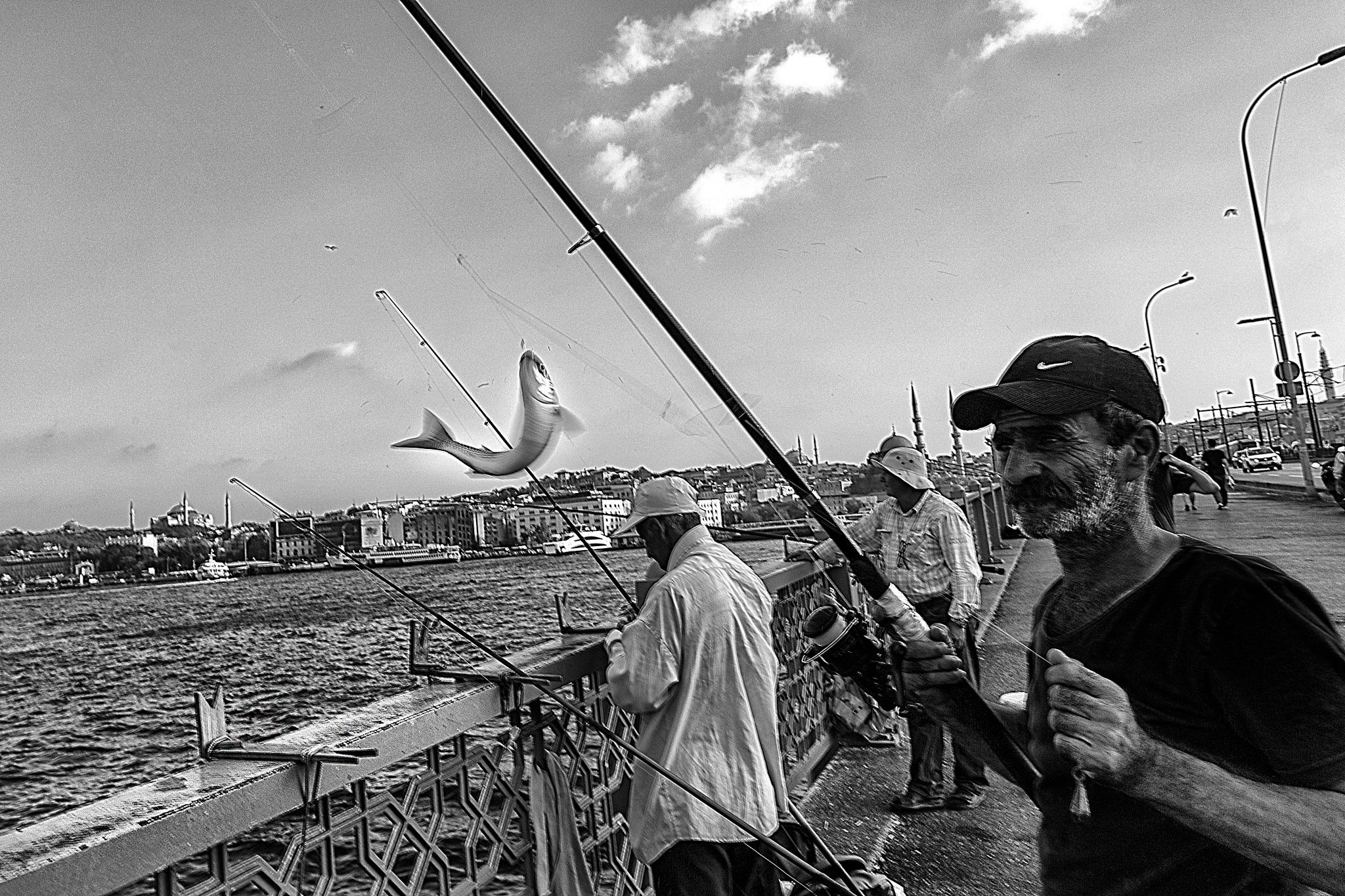 fisherman by erdinc senyurek