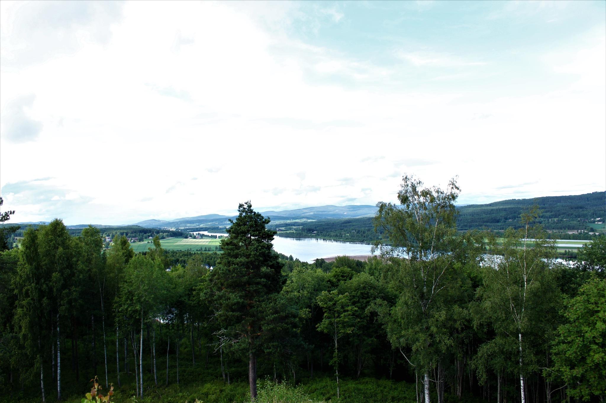 view by thekri