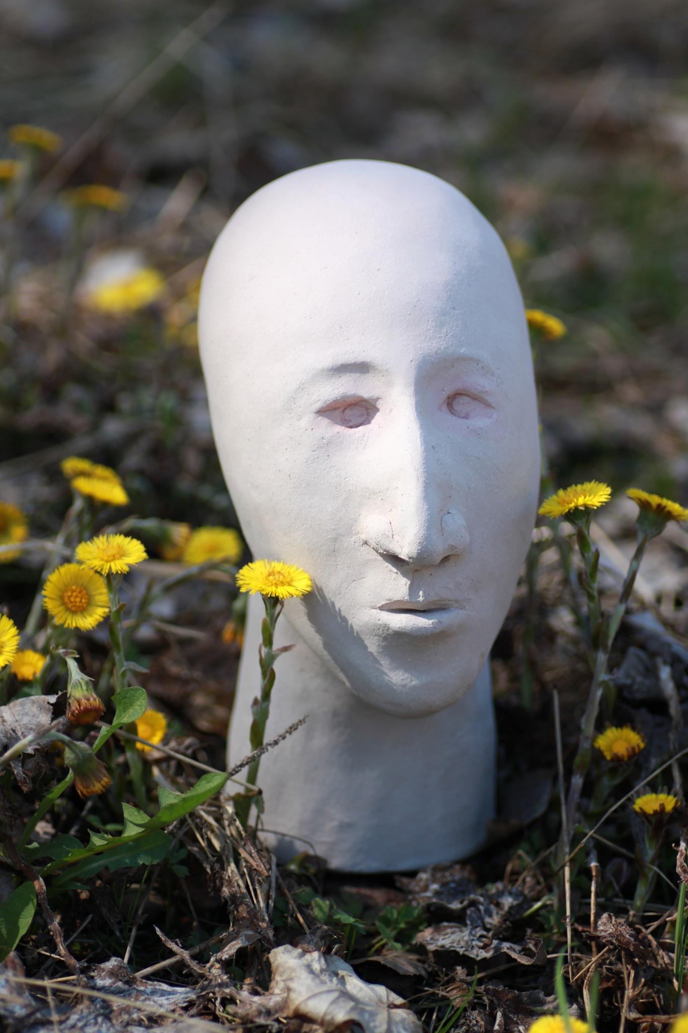 flowers by thekri