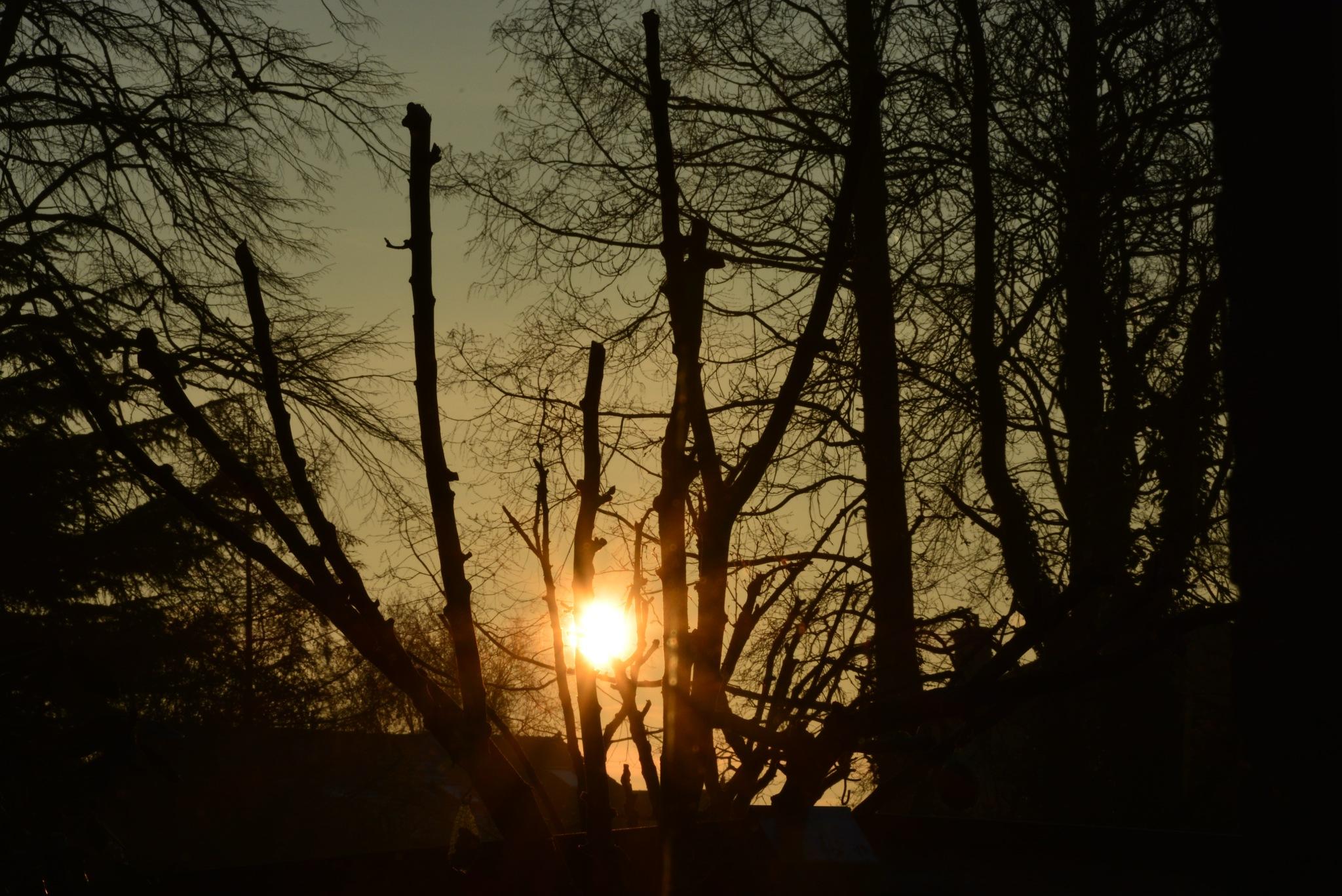 zonsopgang  by Donny Zanders