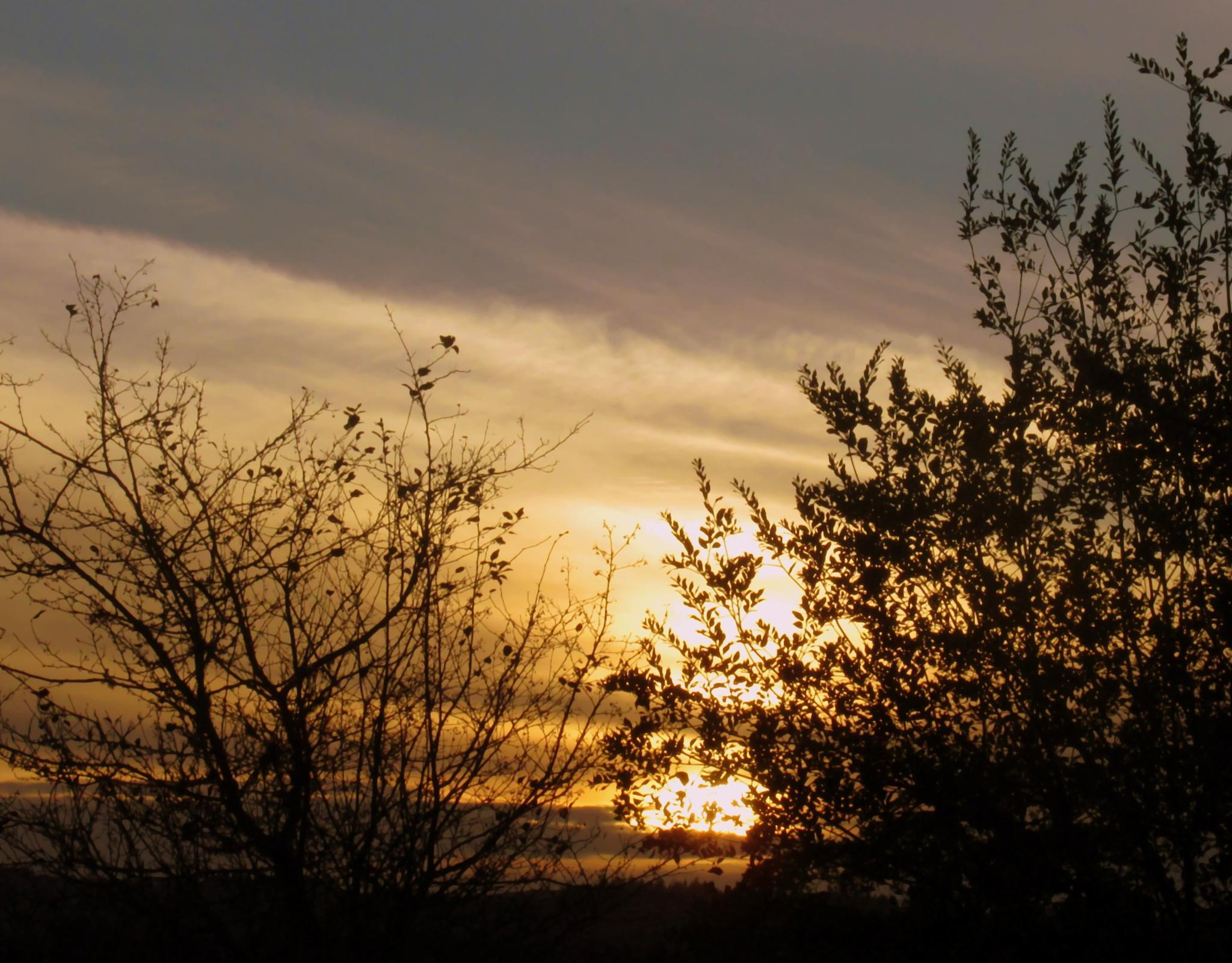 Sunset by karmel