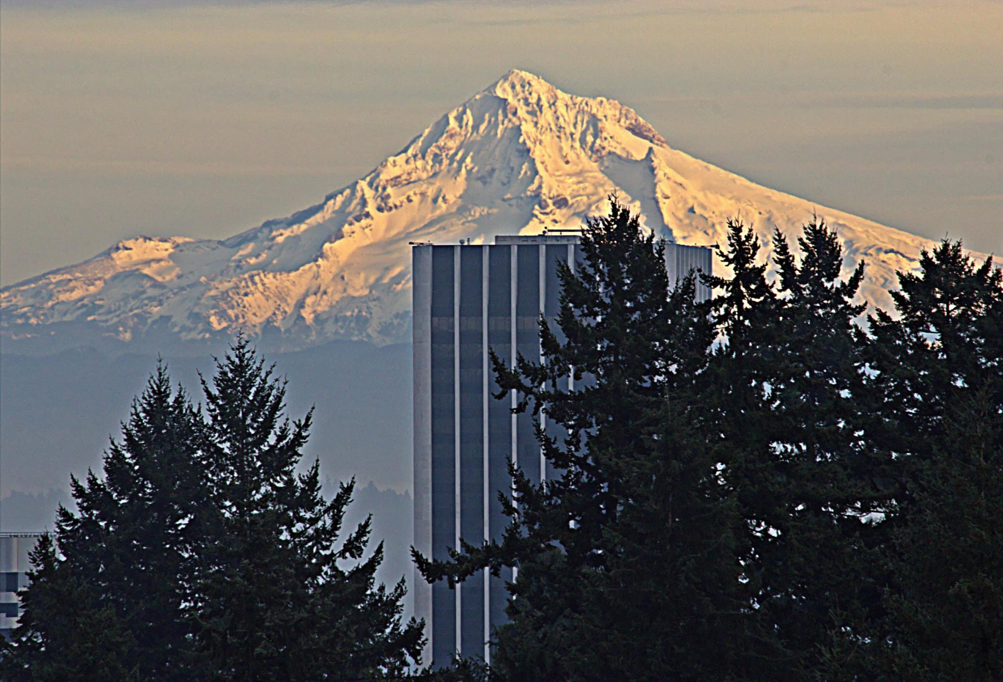 Mt. Hood by karmel