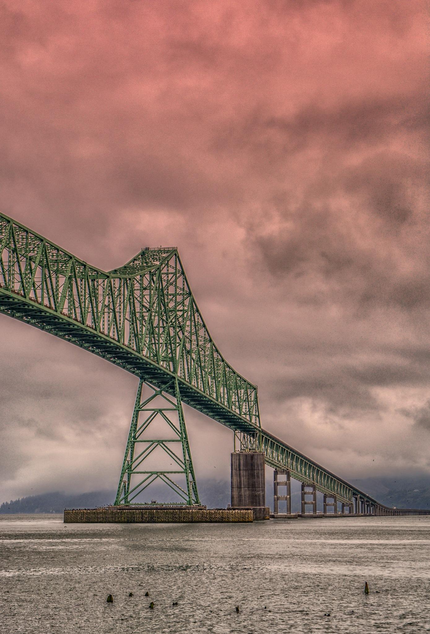 bridge by karmel