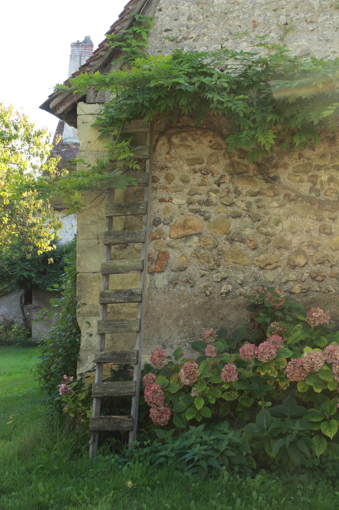 Échelle adossée au mur pour charmer cette vieille batisse by Anita Verneau