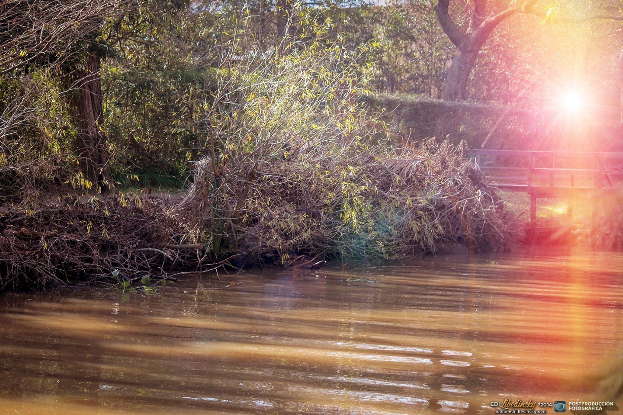 Paseo por el Delta del Tigre - 2014 by Edi Libedinsky