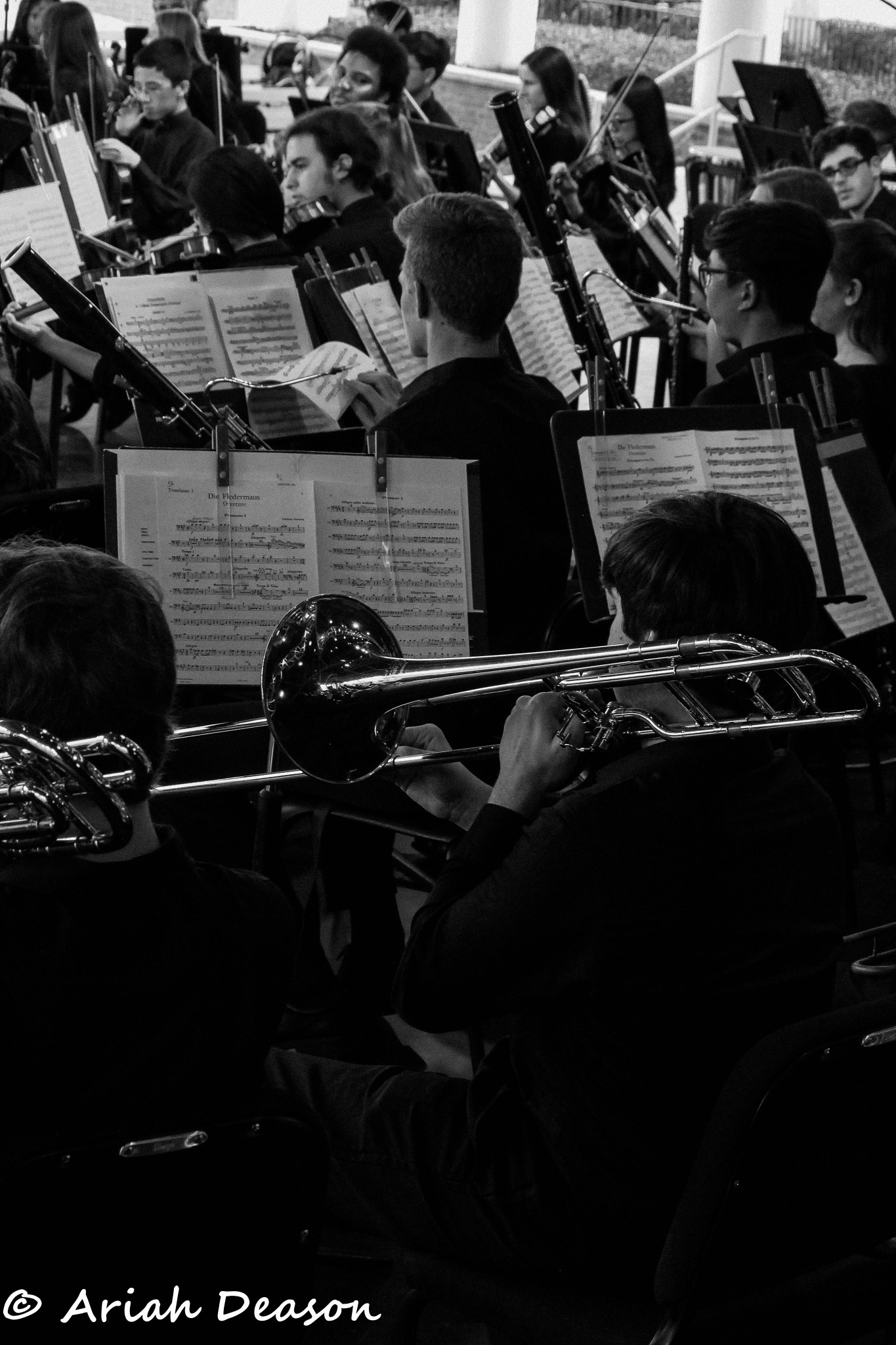Behind the Orchestra by Ariah Deason