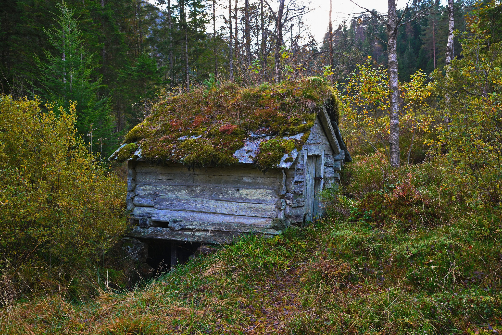 old shed from the 18oo century by Per Molvik