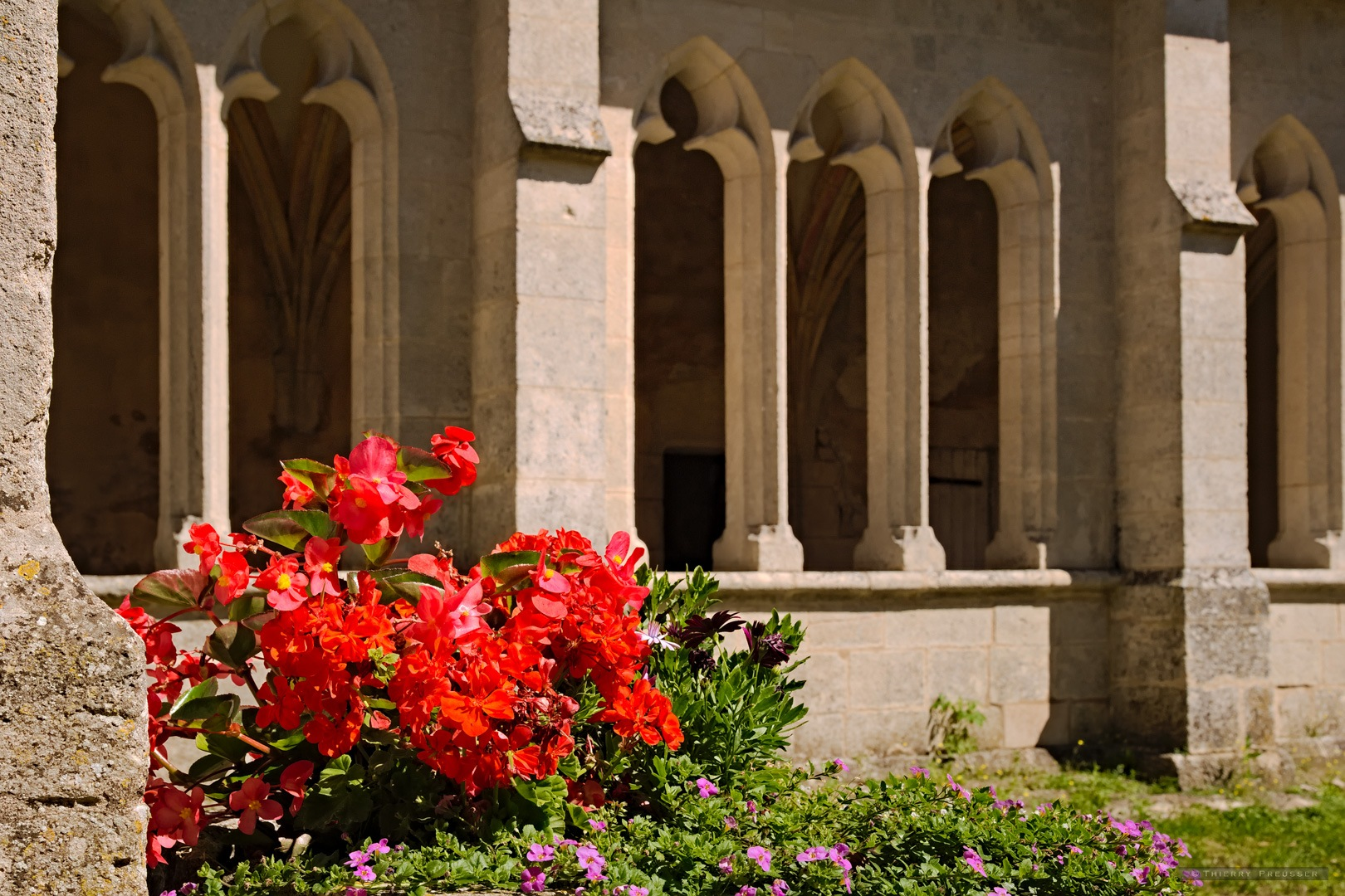 The flowery cloister by Thierry Preusser