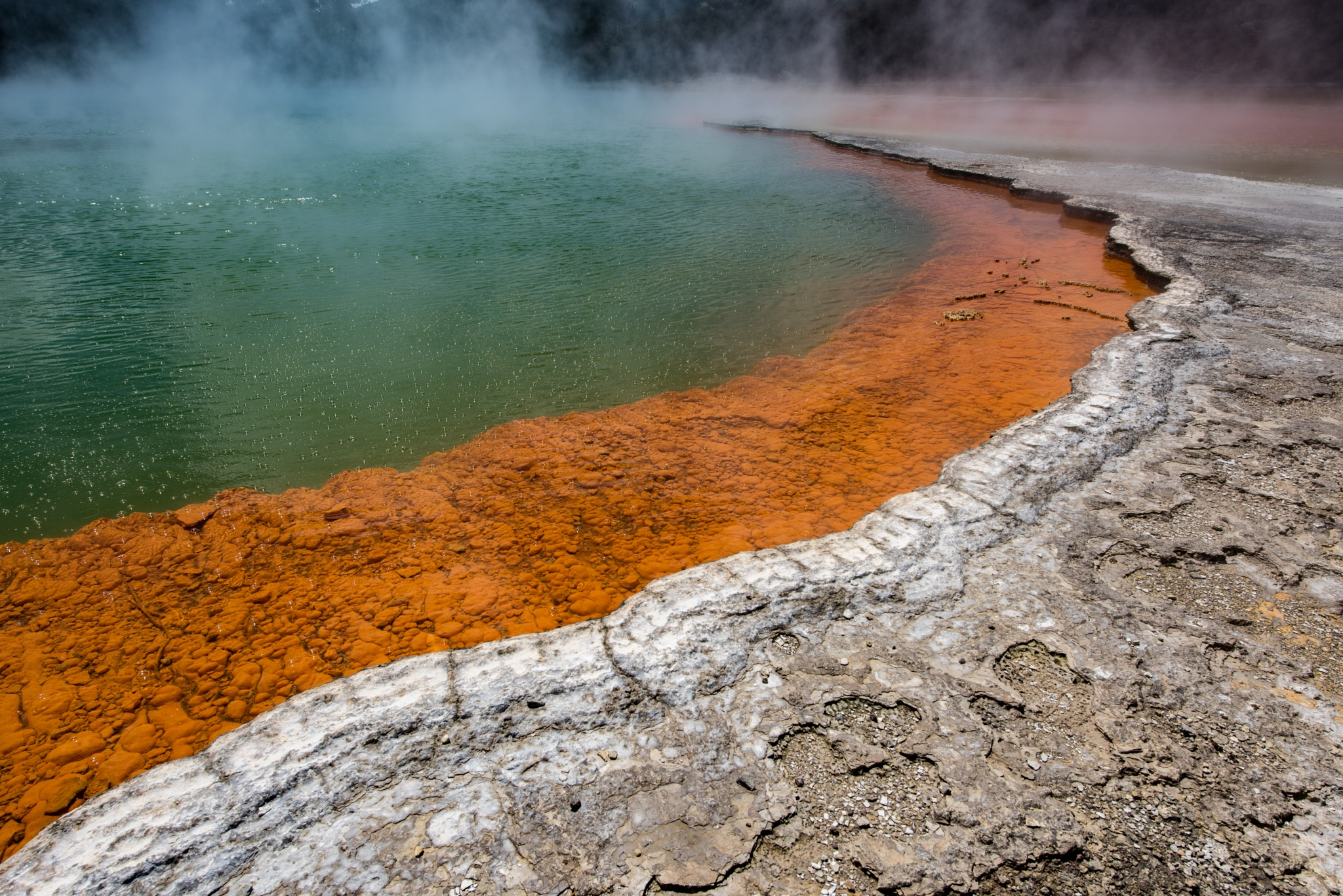 The Champagne Pool by Ashley Kydd