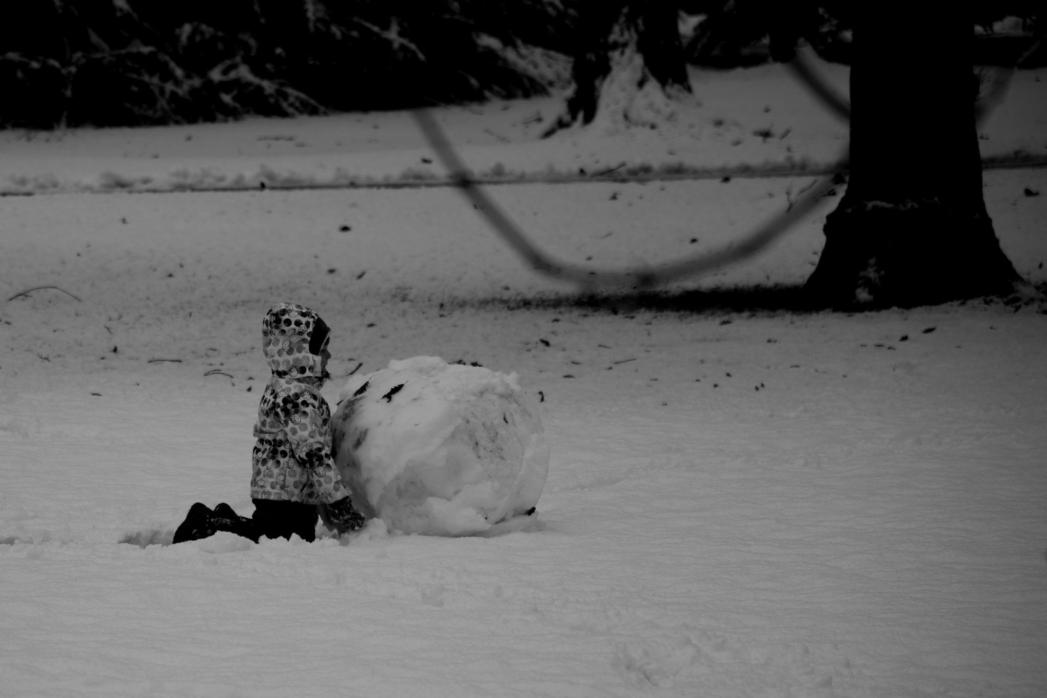 snow man by dusanvladimir