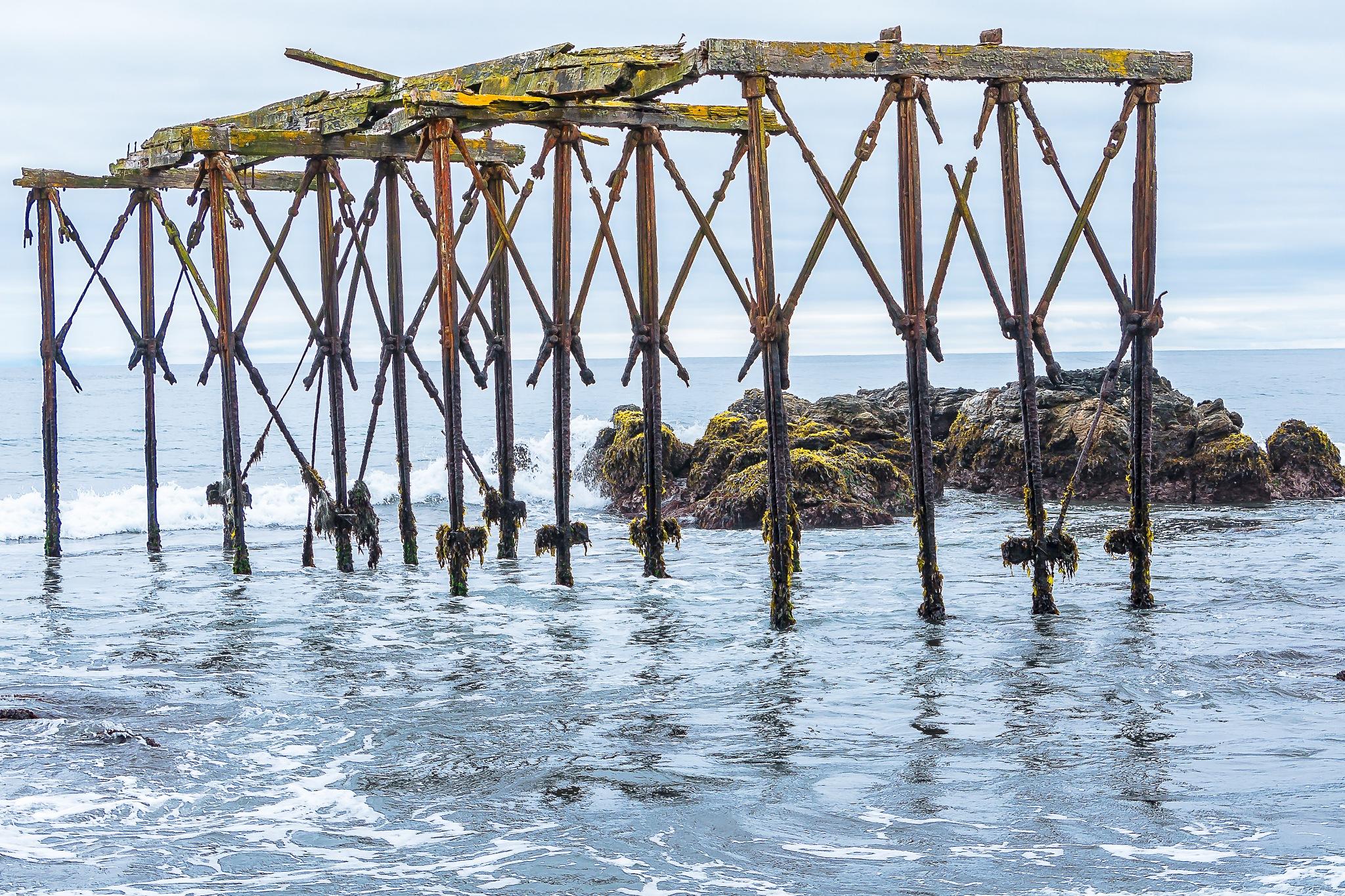 Muelle de LLico by ecamus