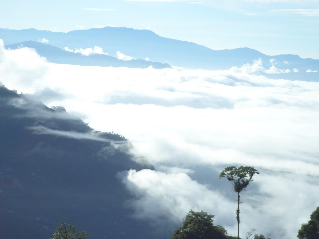 Sikim-Rawalang by Norbert Gottlieb