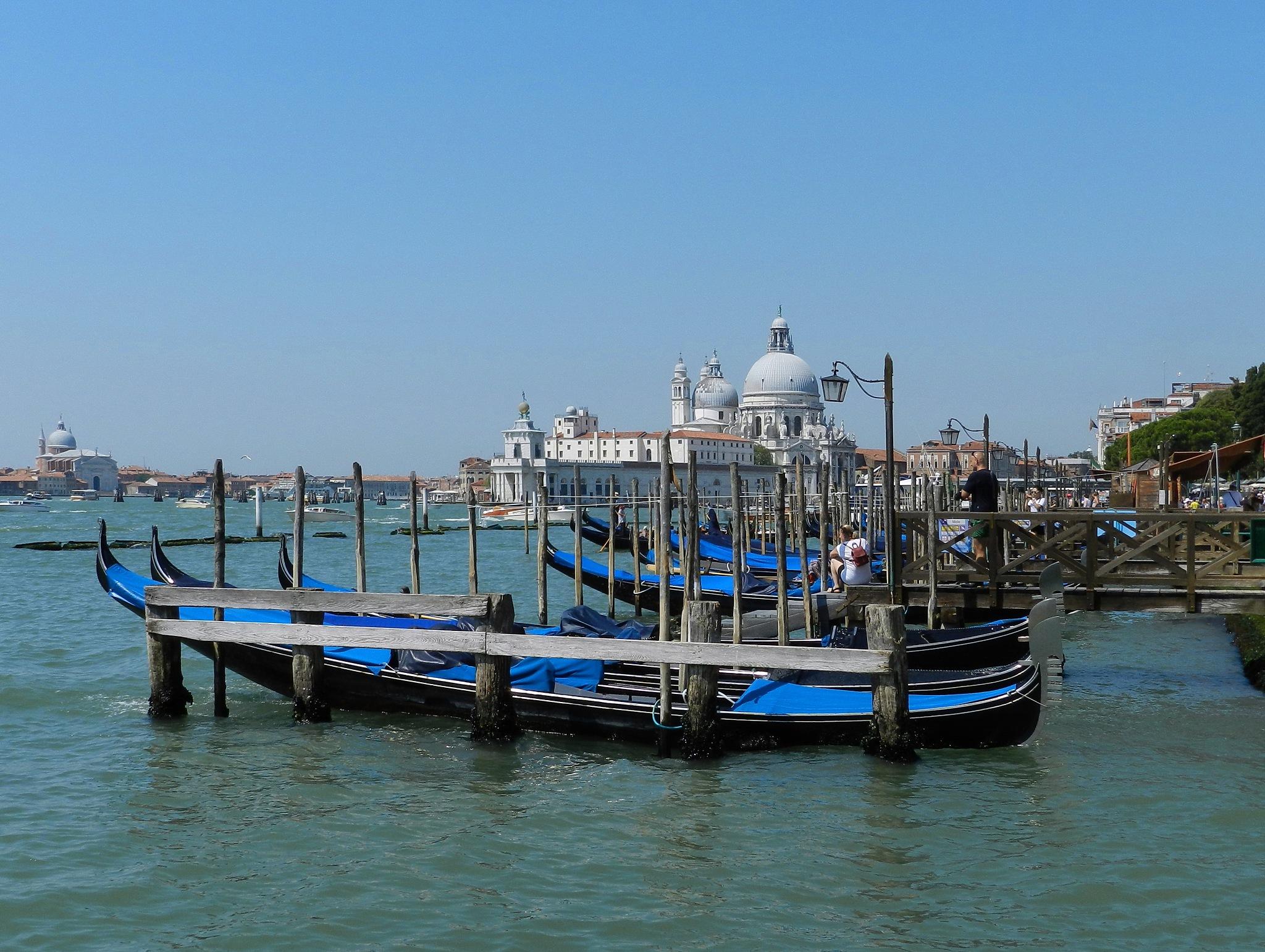 Венеция. Venezia. by SvetlanaRubtcova