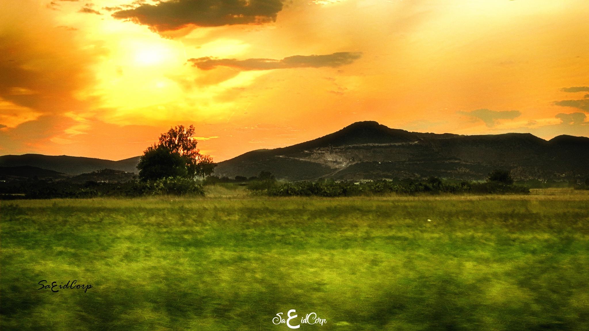 sun down by sa3idcorp