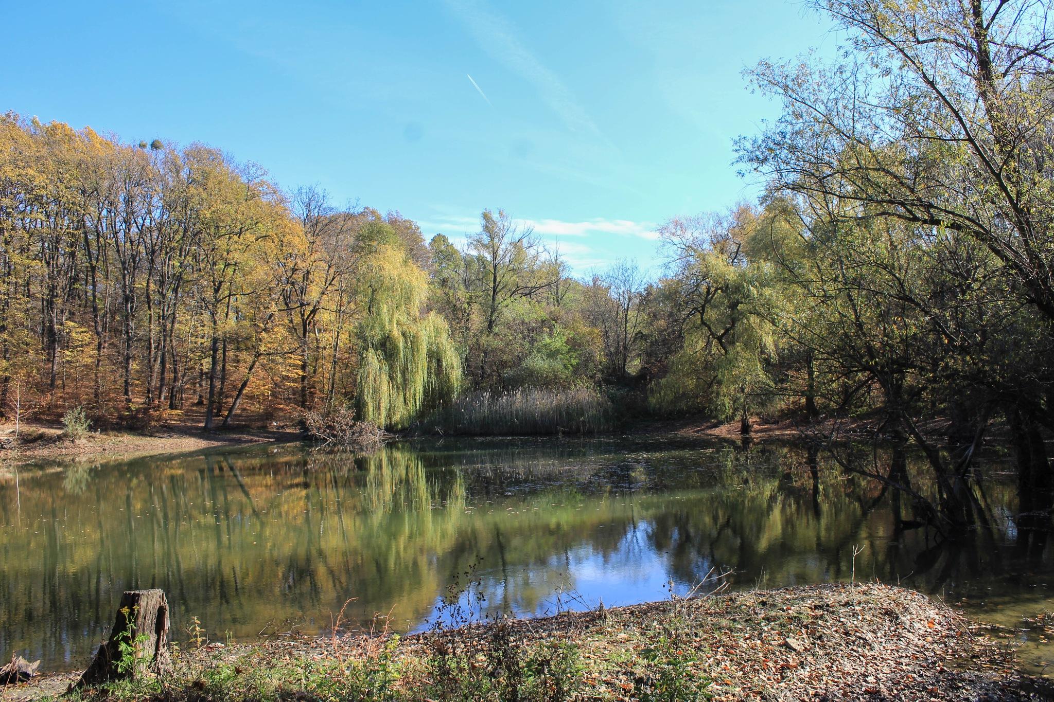 forgotten little lake2. by Sziszi_photo_art