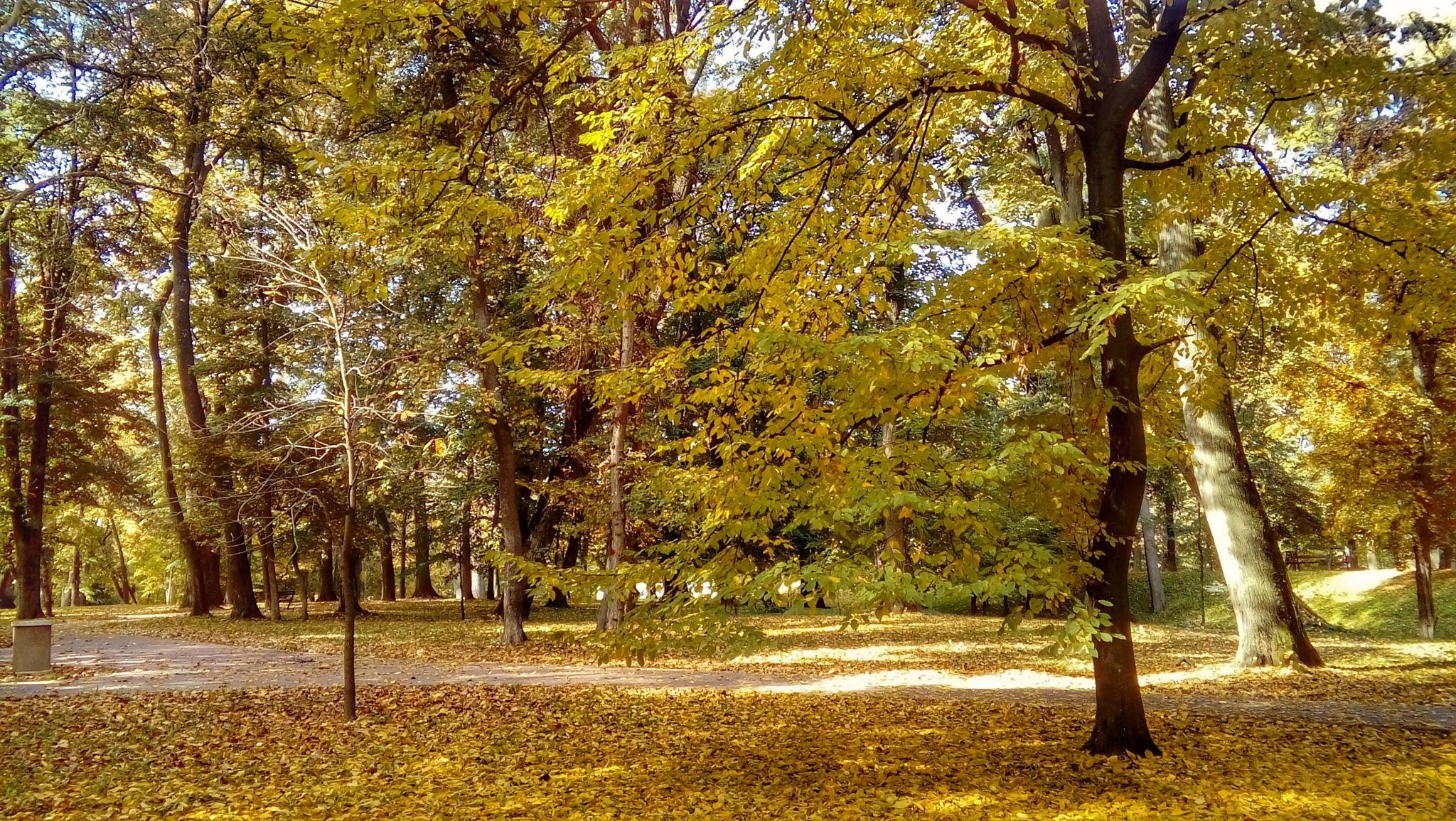 Đakovo, Strossmayerov Park by Ana-Marija Veg