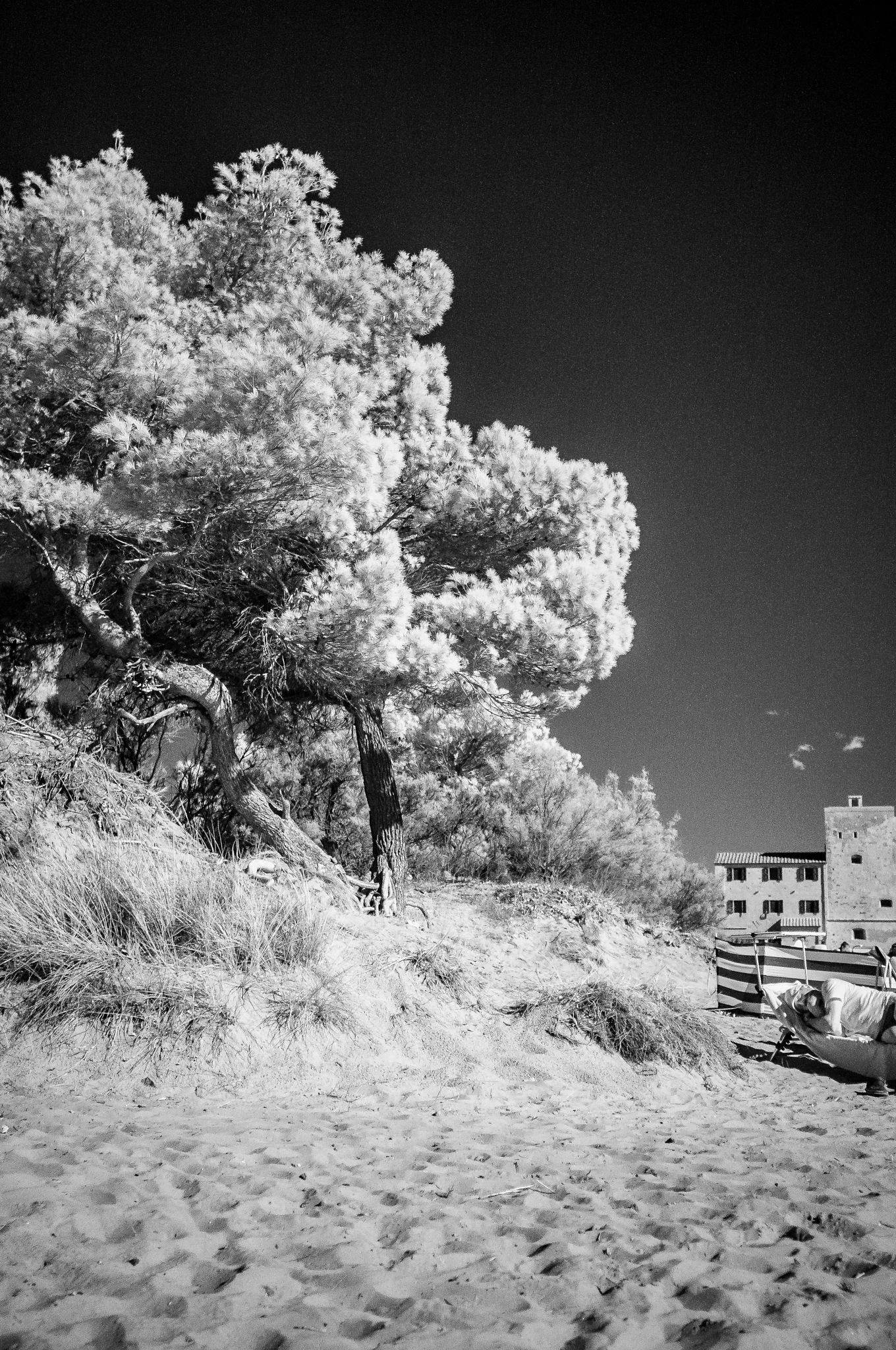 Untitled by Lucio Barabesi