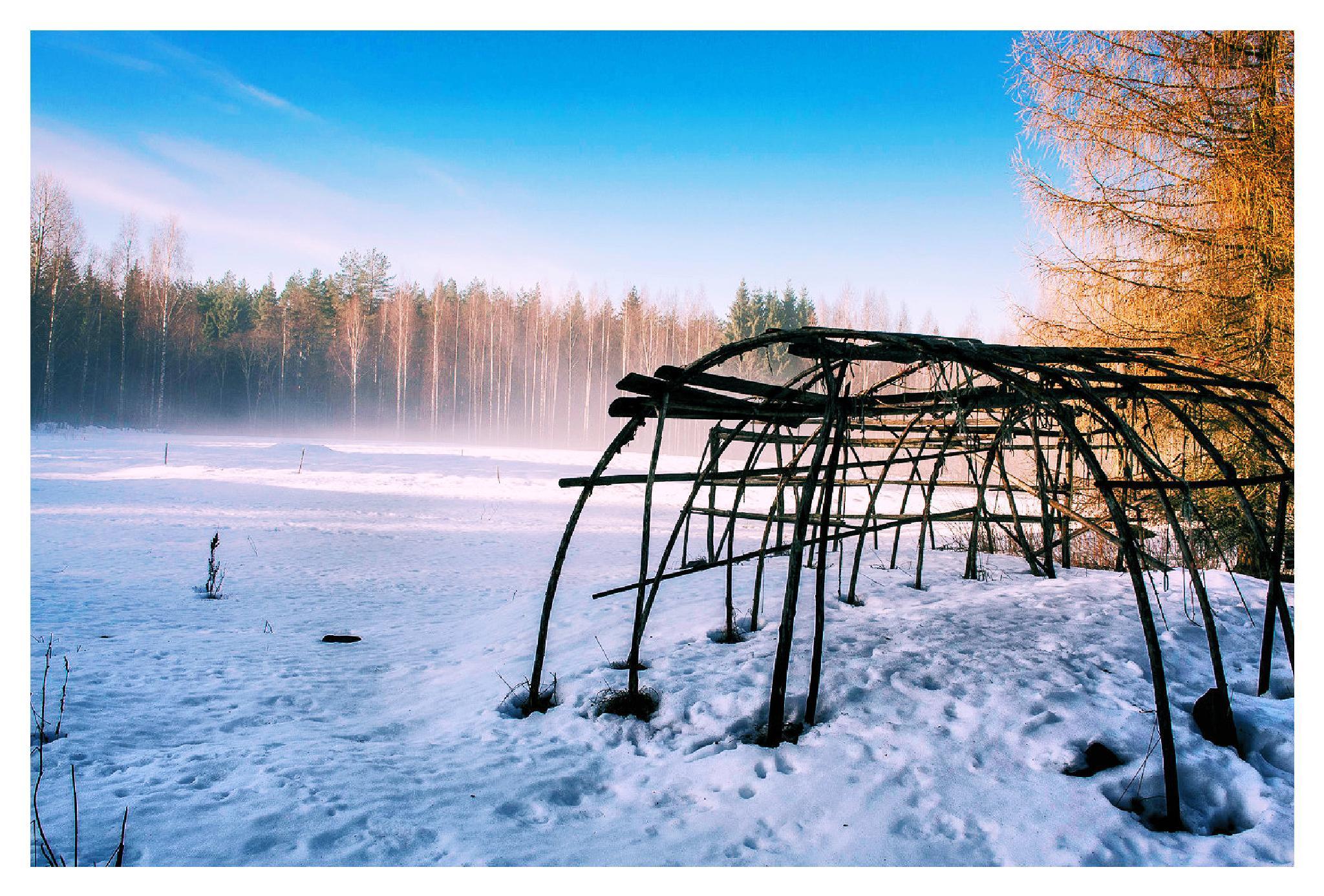Fog on a Snowy Field by pekka ilari t