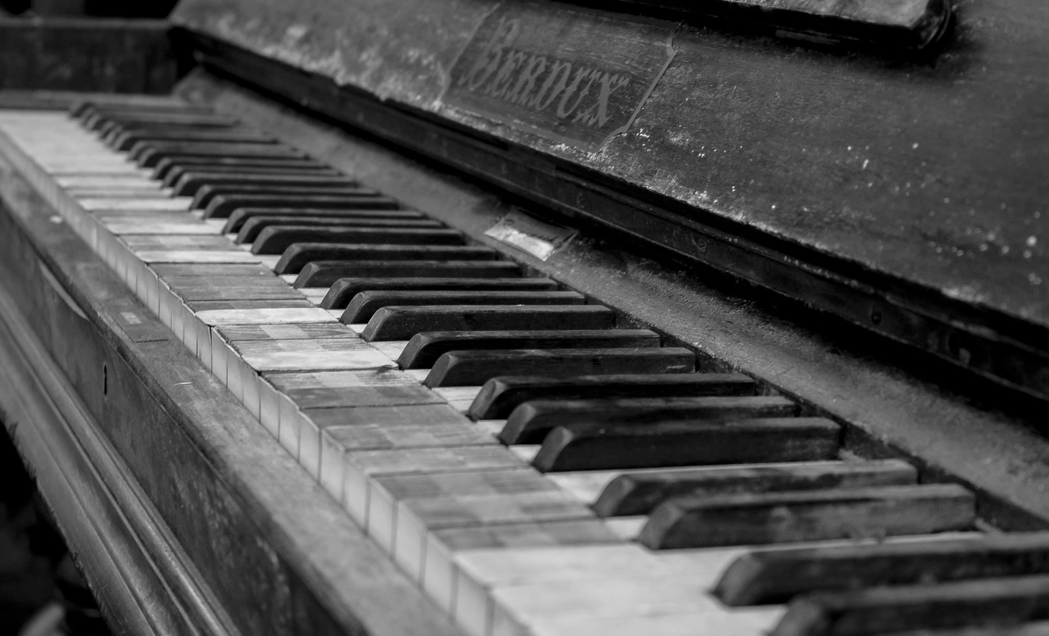 Piano  by Sanket Bartakke