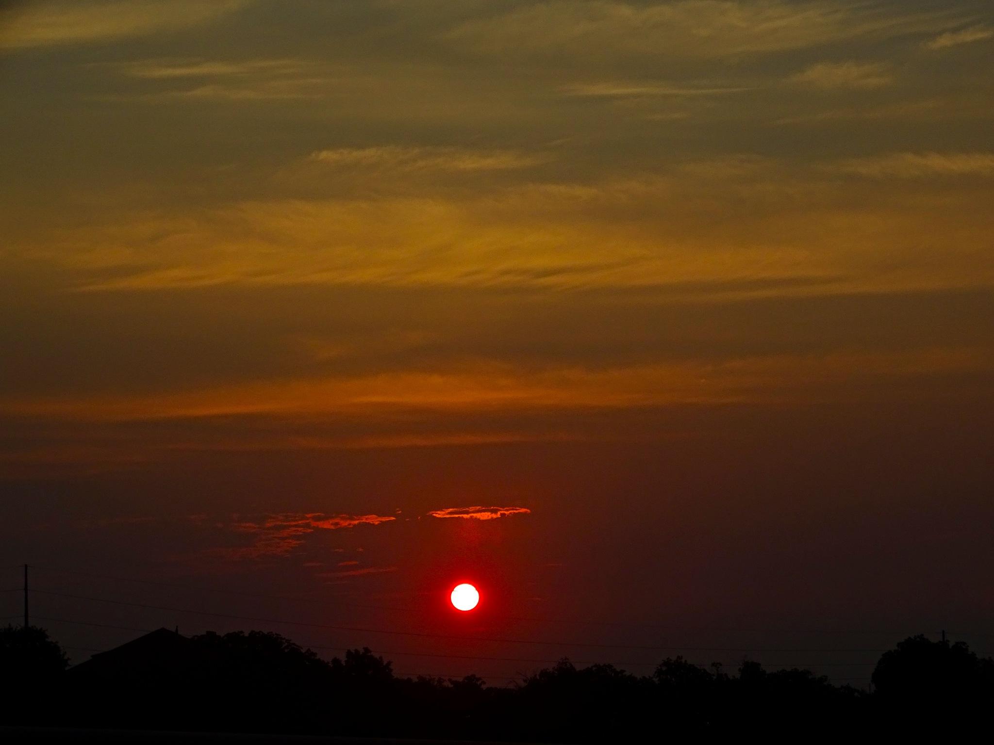 Texas Sunset  by Patty Stockton