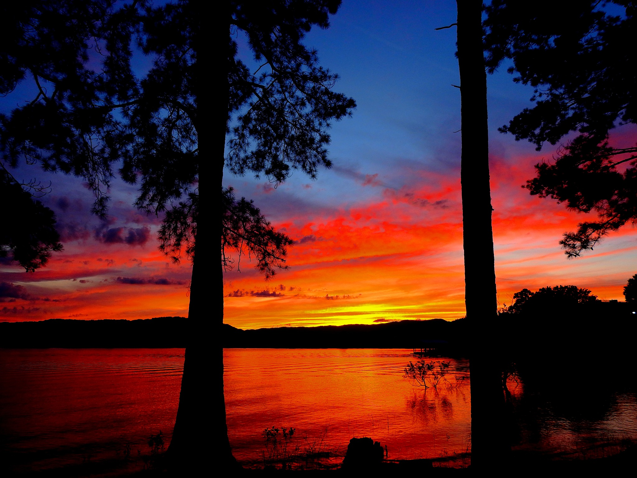 Darkness Falls on Cherokee Lake by Patty Stockton