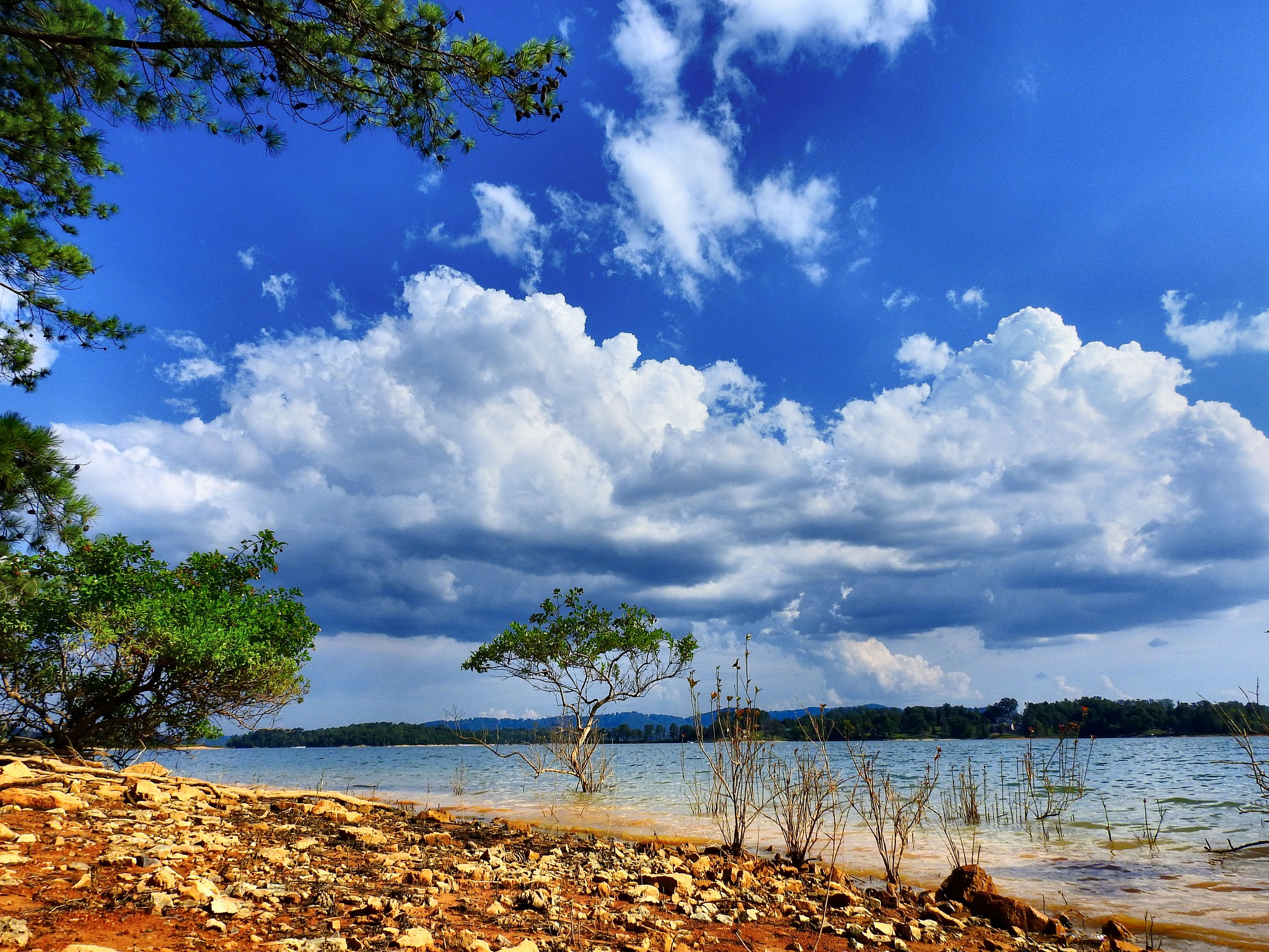 The Lake Shore Returns by Patty Stockton