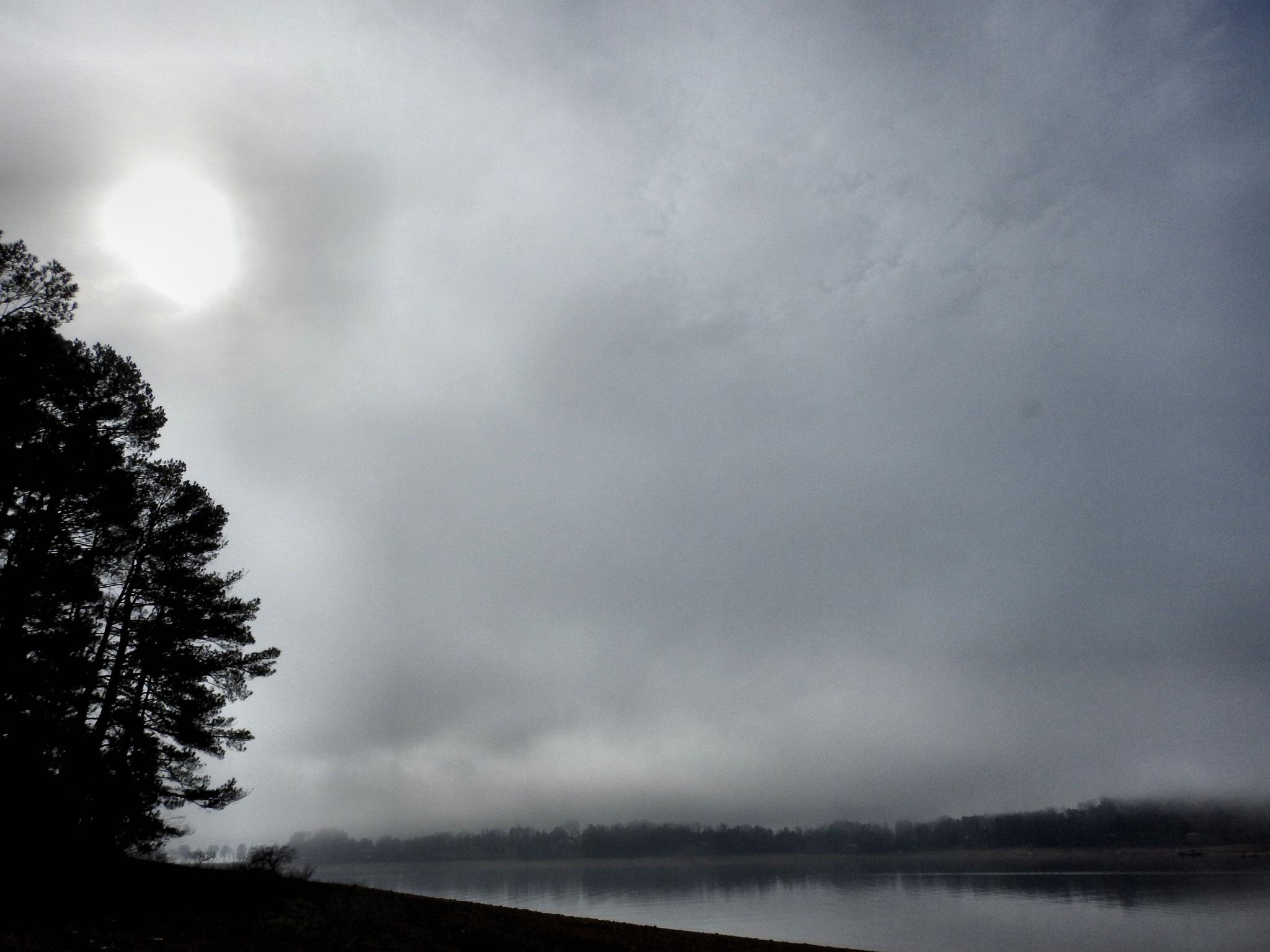 Morning Lake Fog by Patty Stockton