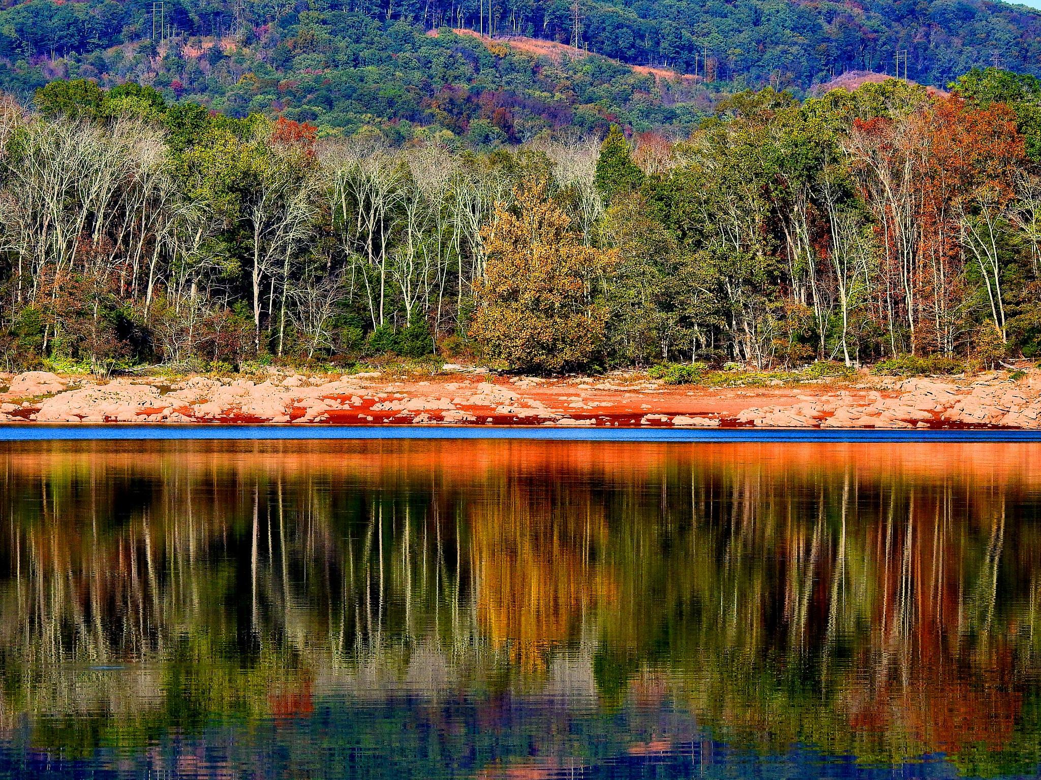 Fall Lake Reflections by Patty Stockton