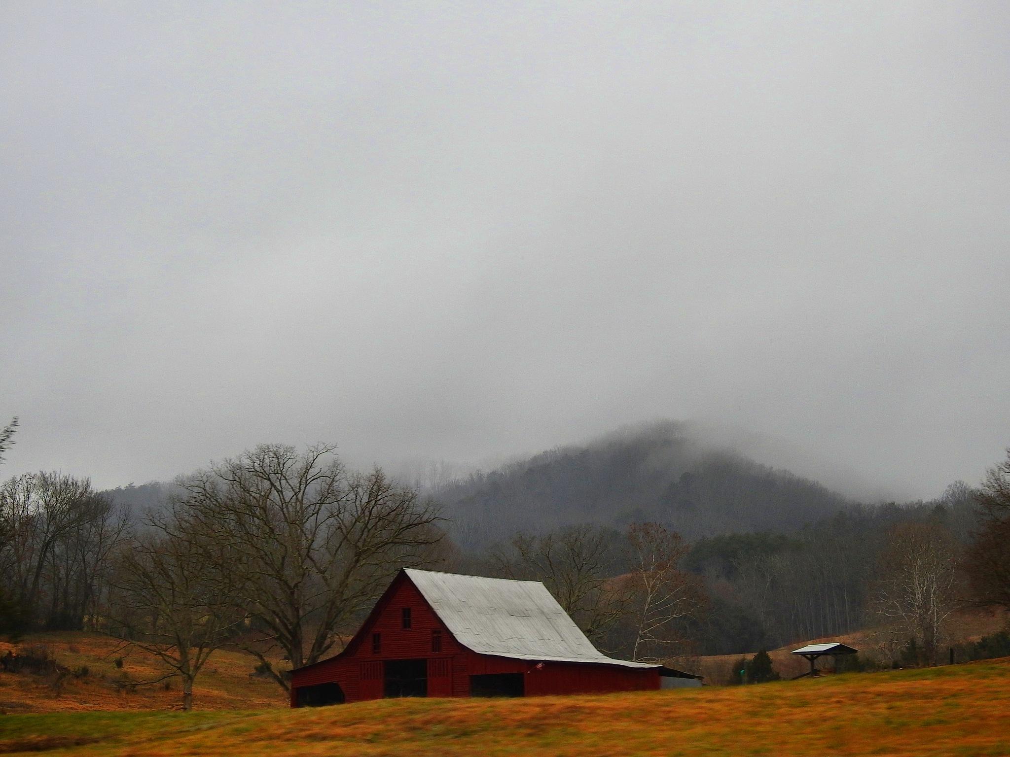 Foggy Barn by Patty Stockton
