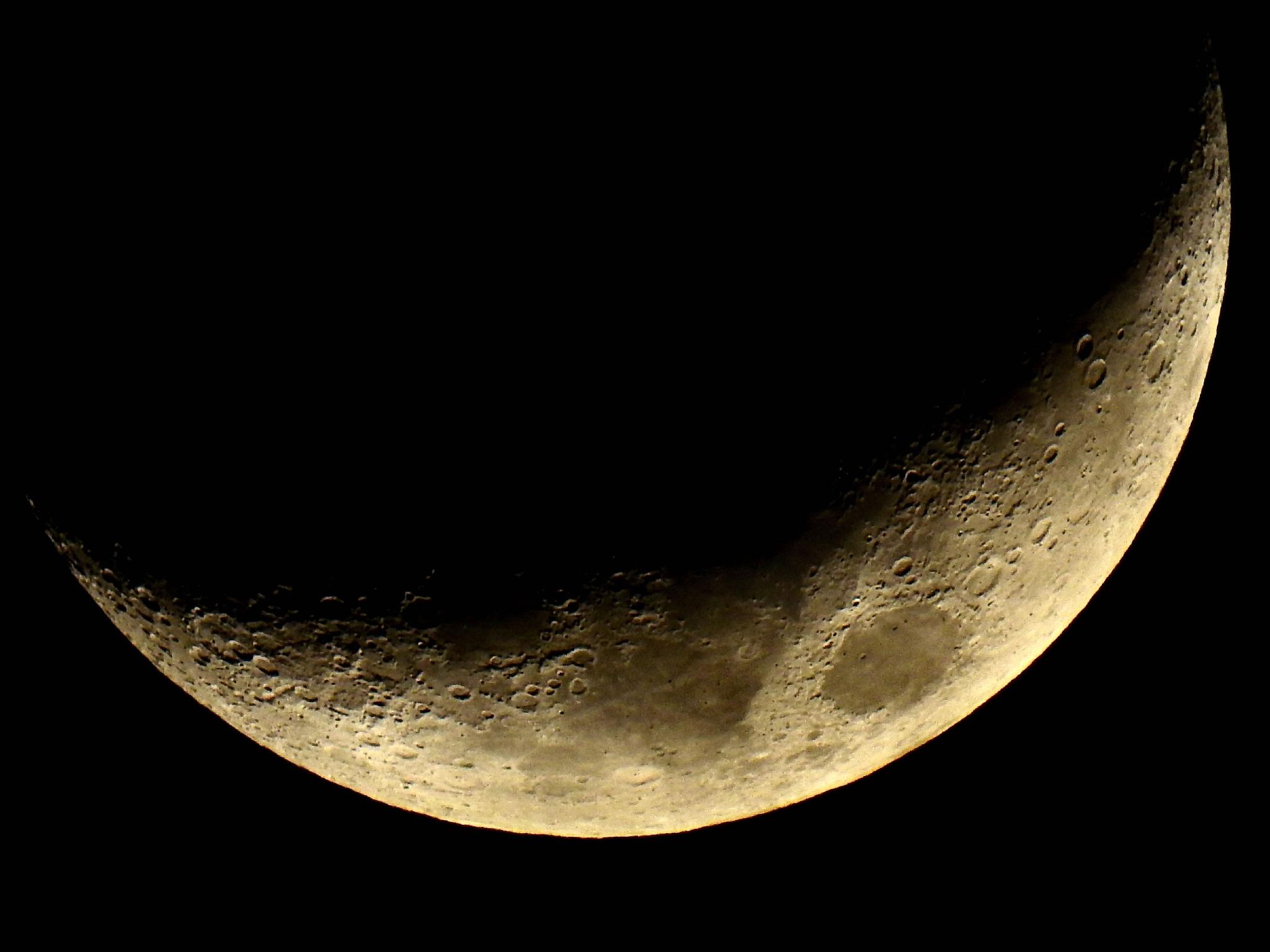 Tonight's Crescent Moon by Patty Stockton