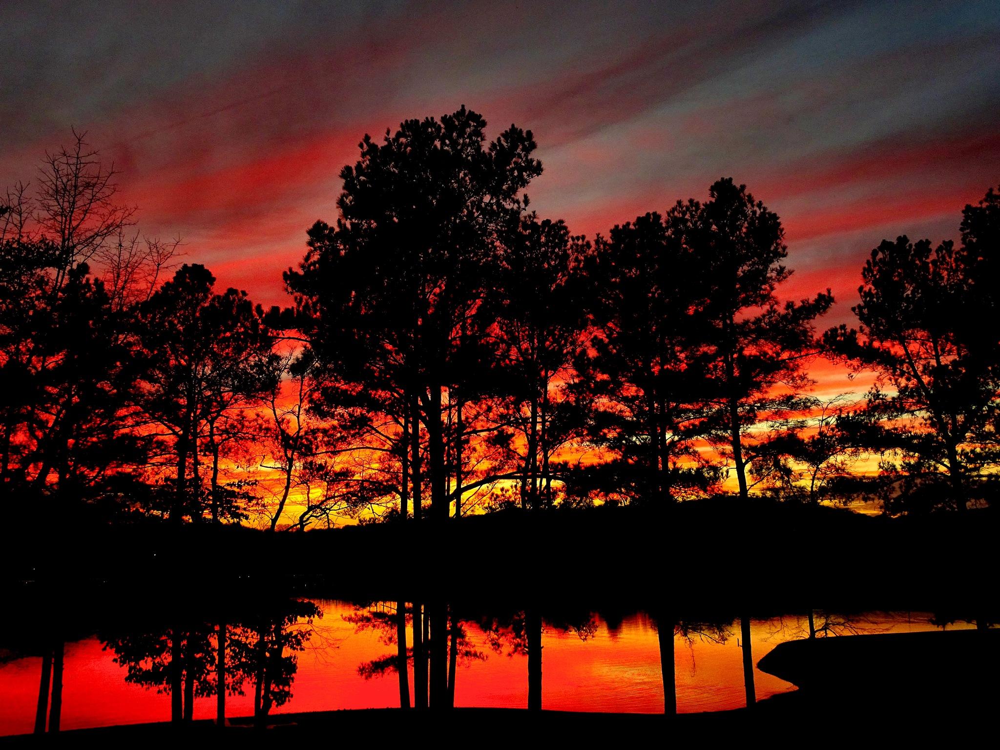 Sunset by Patty Stockton