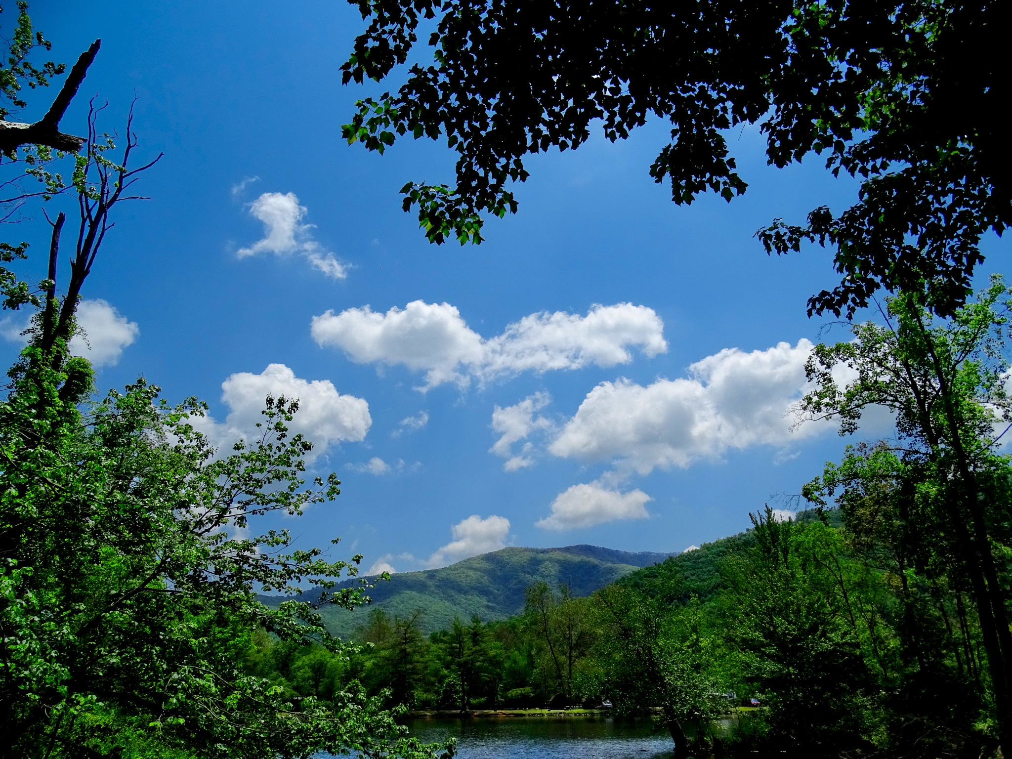 Asheville East KOA Campground North Carolina by Patty Stockton