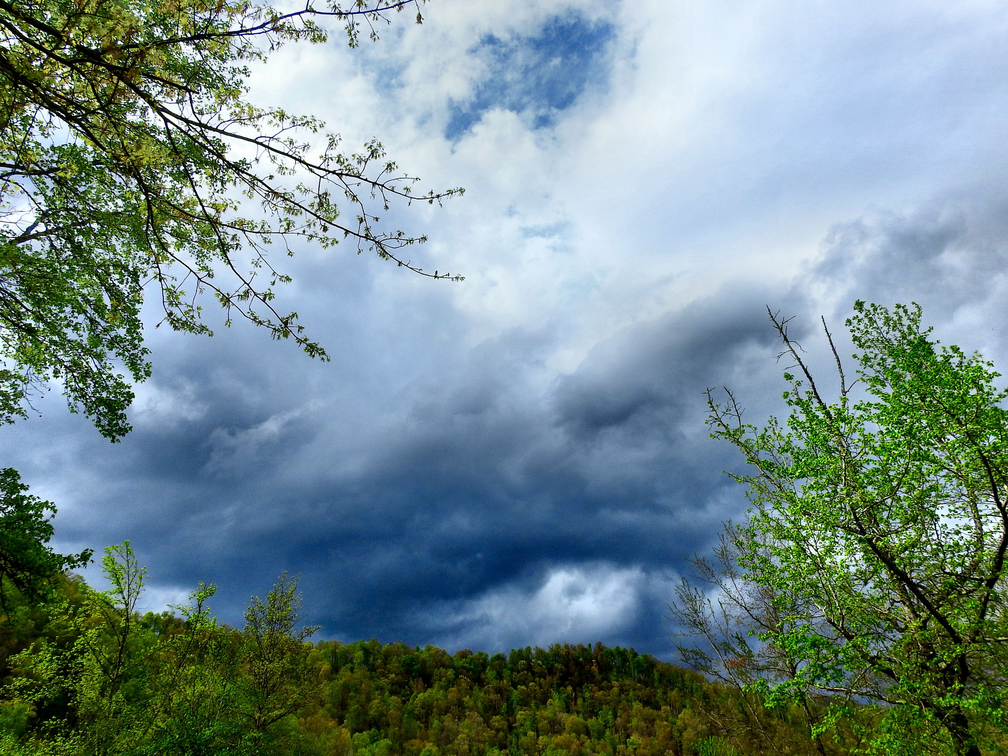 Spring Mountain Storms by Patty Stockton