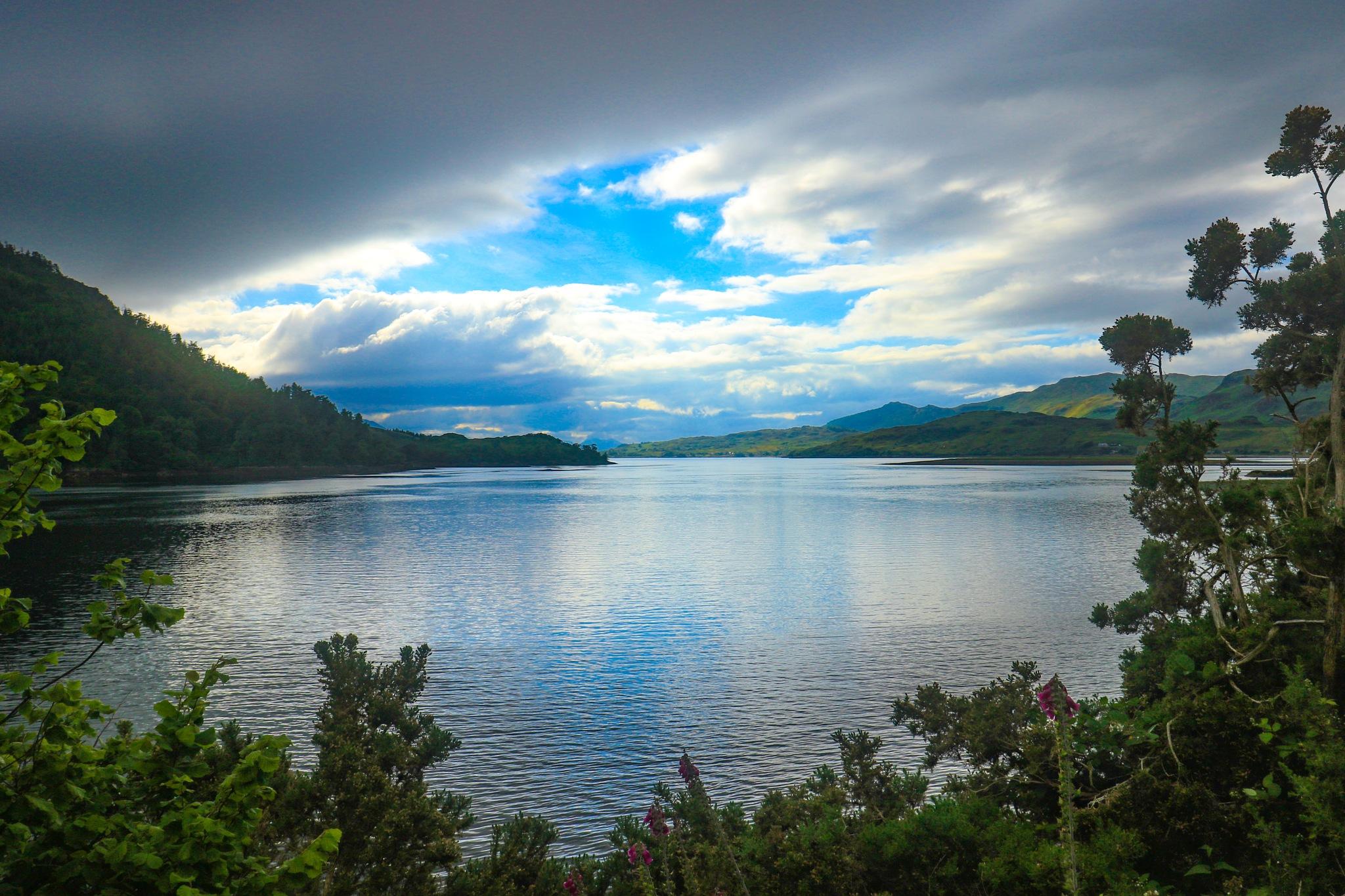 Beside a Loch by DiverFreak