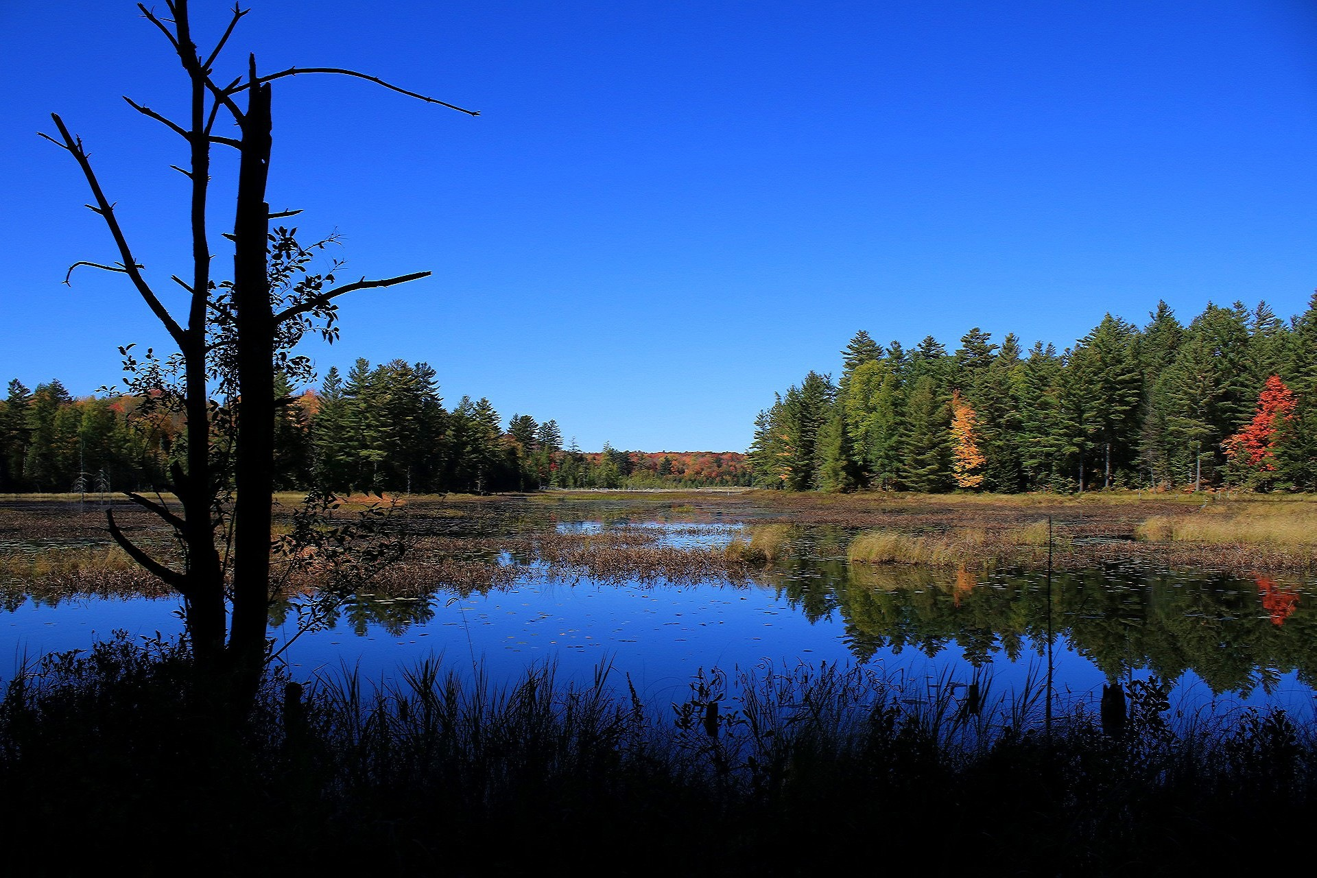 Adirondack Park New York State by Michelle Marie