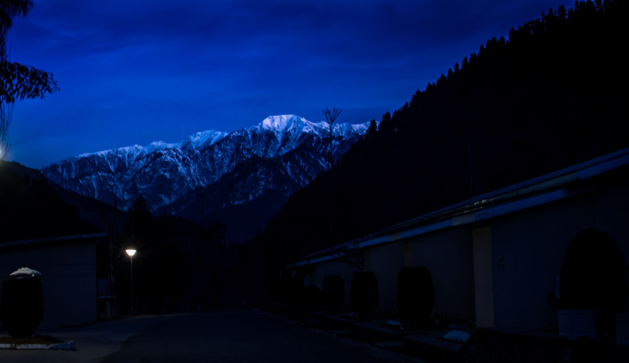 Night View  by Sunny Bill