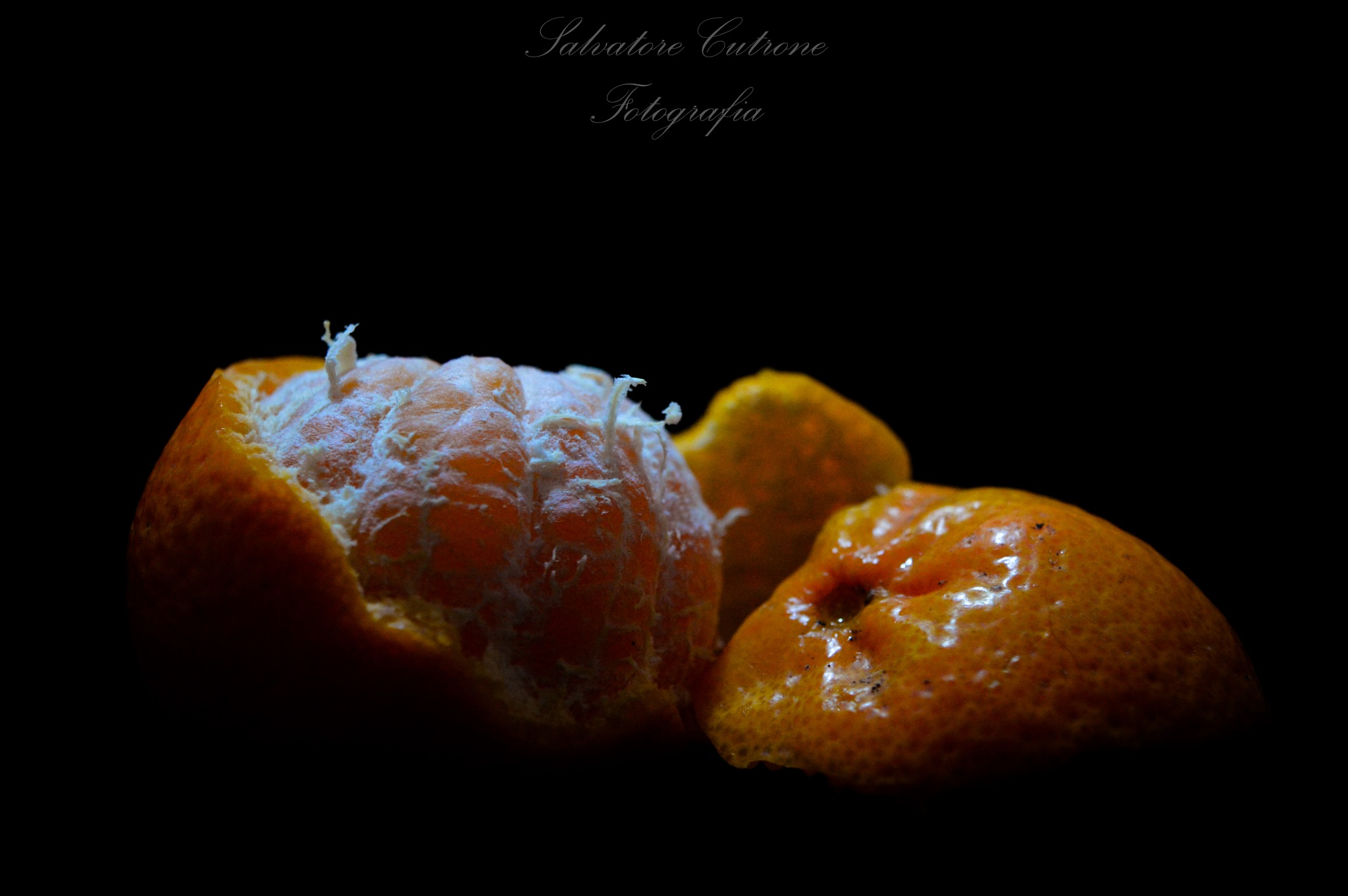 mandarin orange by Salvatore Cutrone