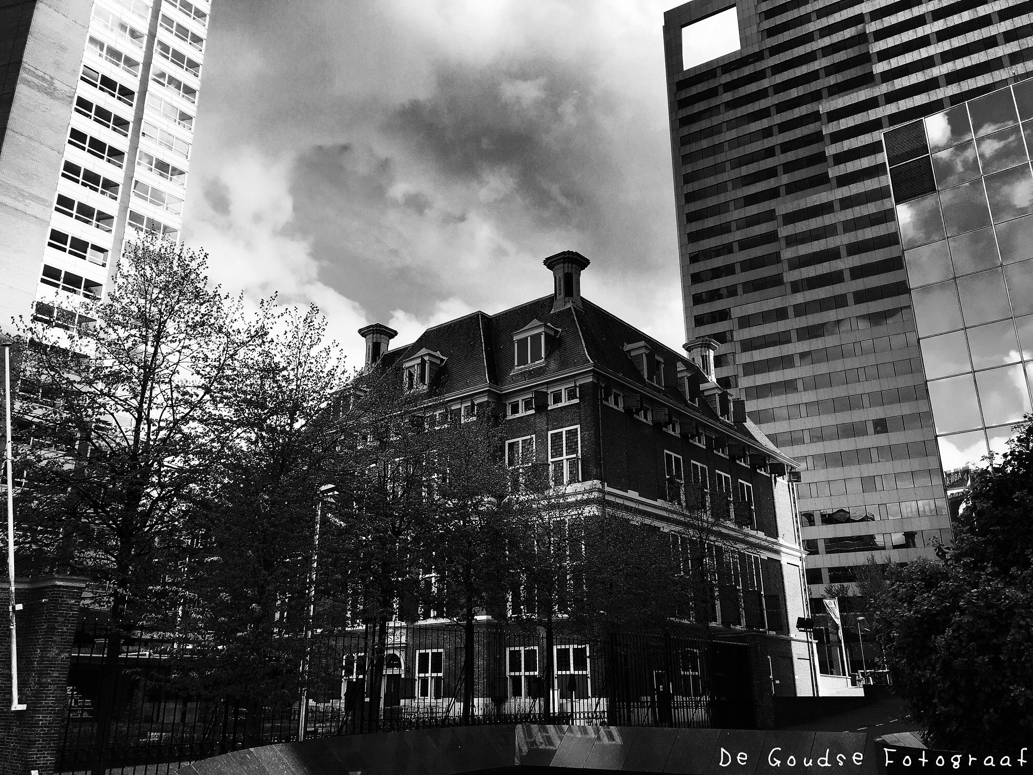 Rotterdam  by De Goudse Fotograaf