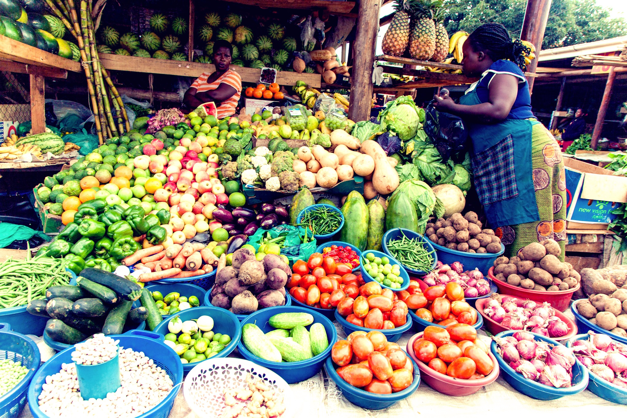 You are what you eat (cont'd) by Dicson Amanya