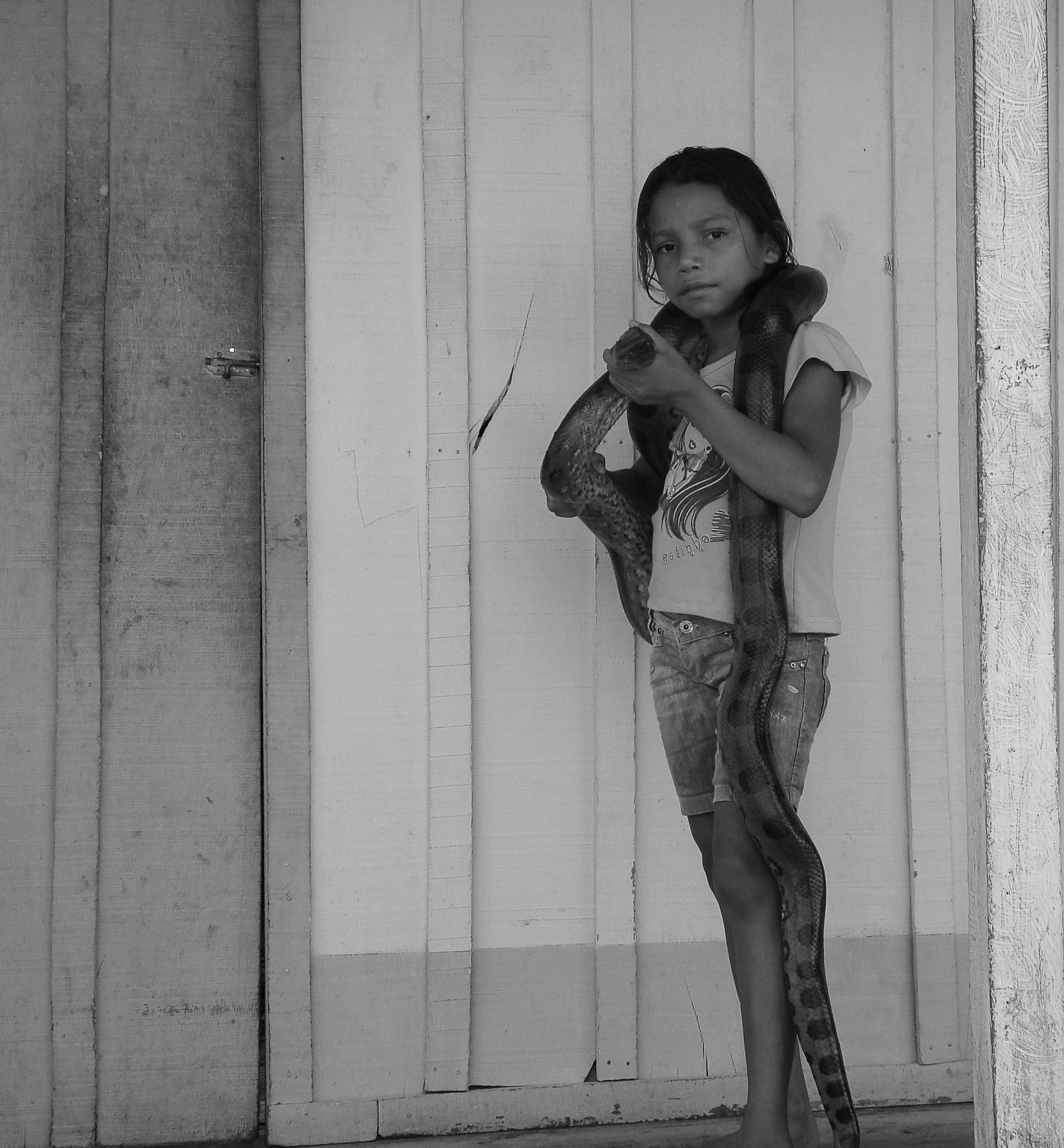 Amazonas 2 by Alexandre Rossi Gurgel