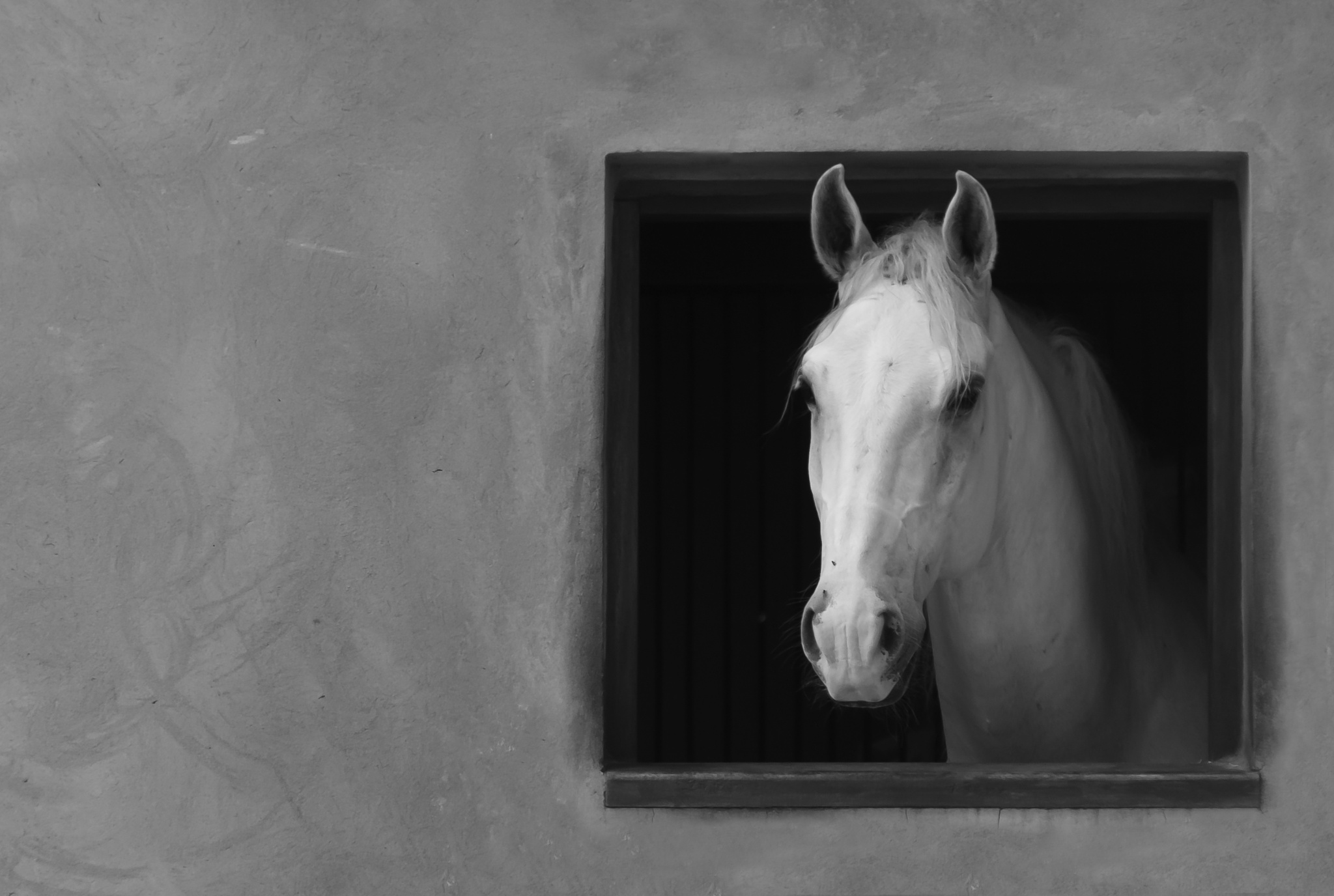 A janela by MarceloGemignani