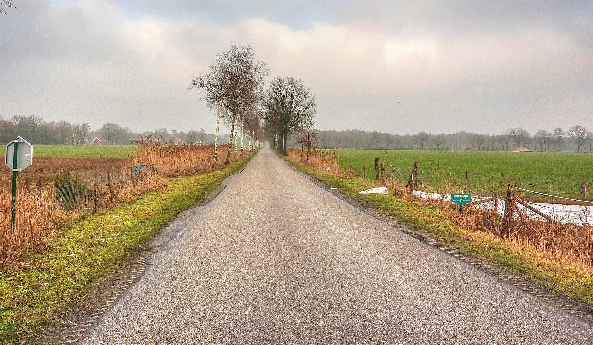 Empty road by Frans van Maurik