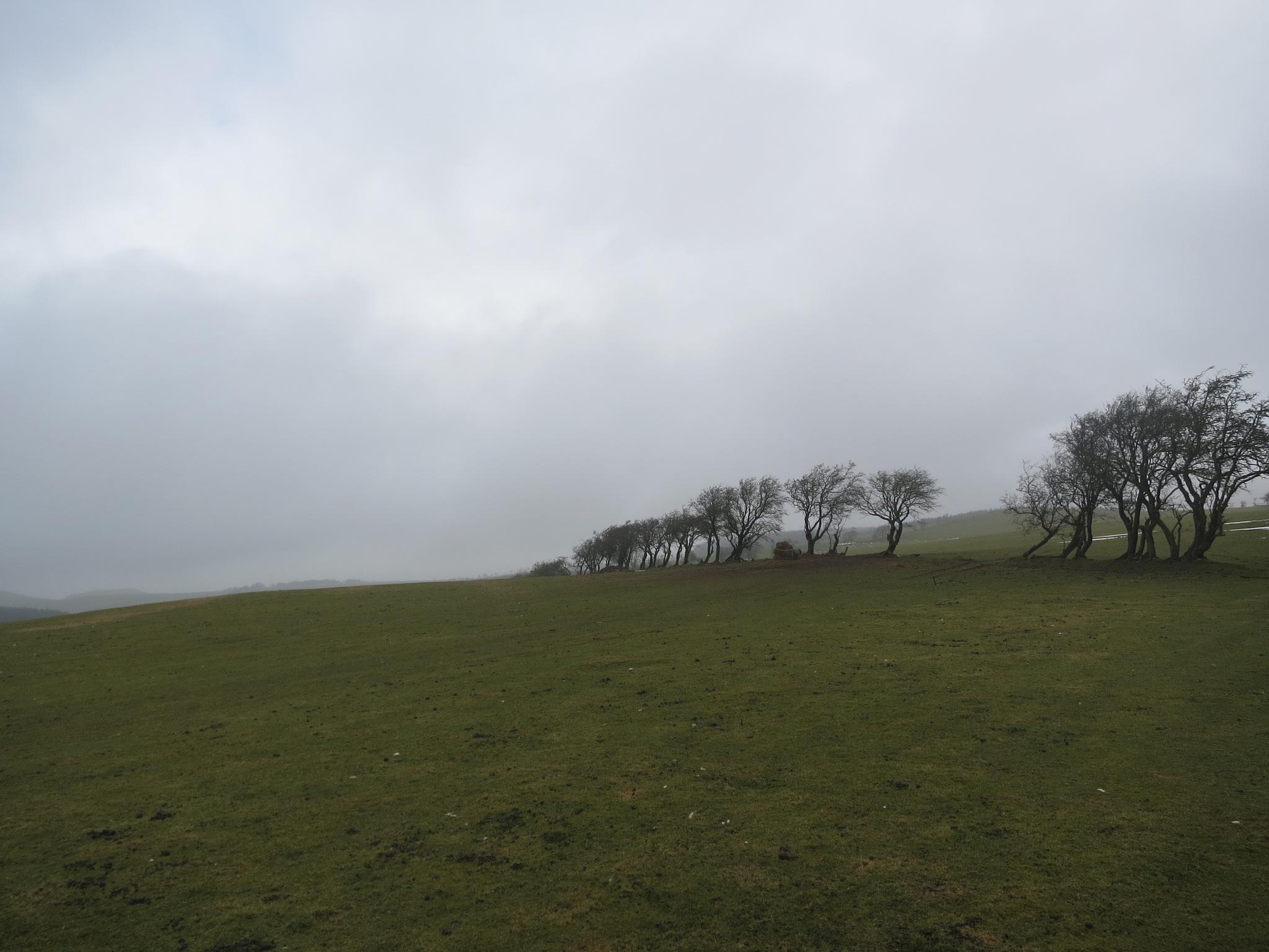 Welsh/English Border Ride 10 by GraemeLeePollard