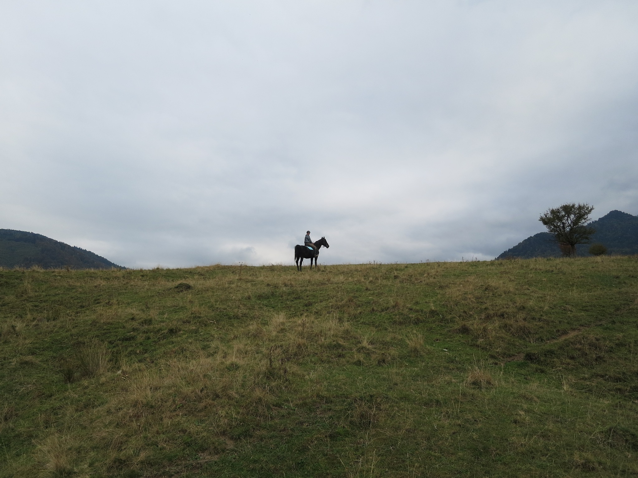 Rasnov Riding by GraemeLeePollard